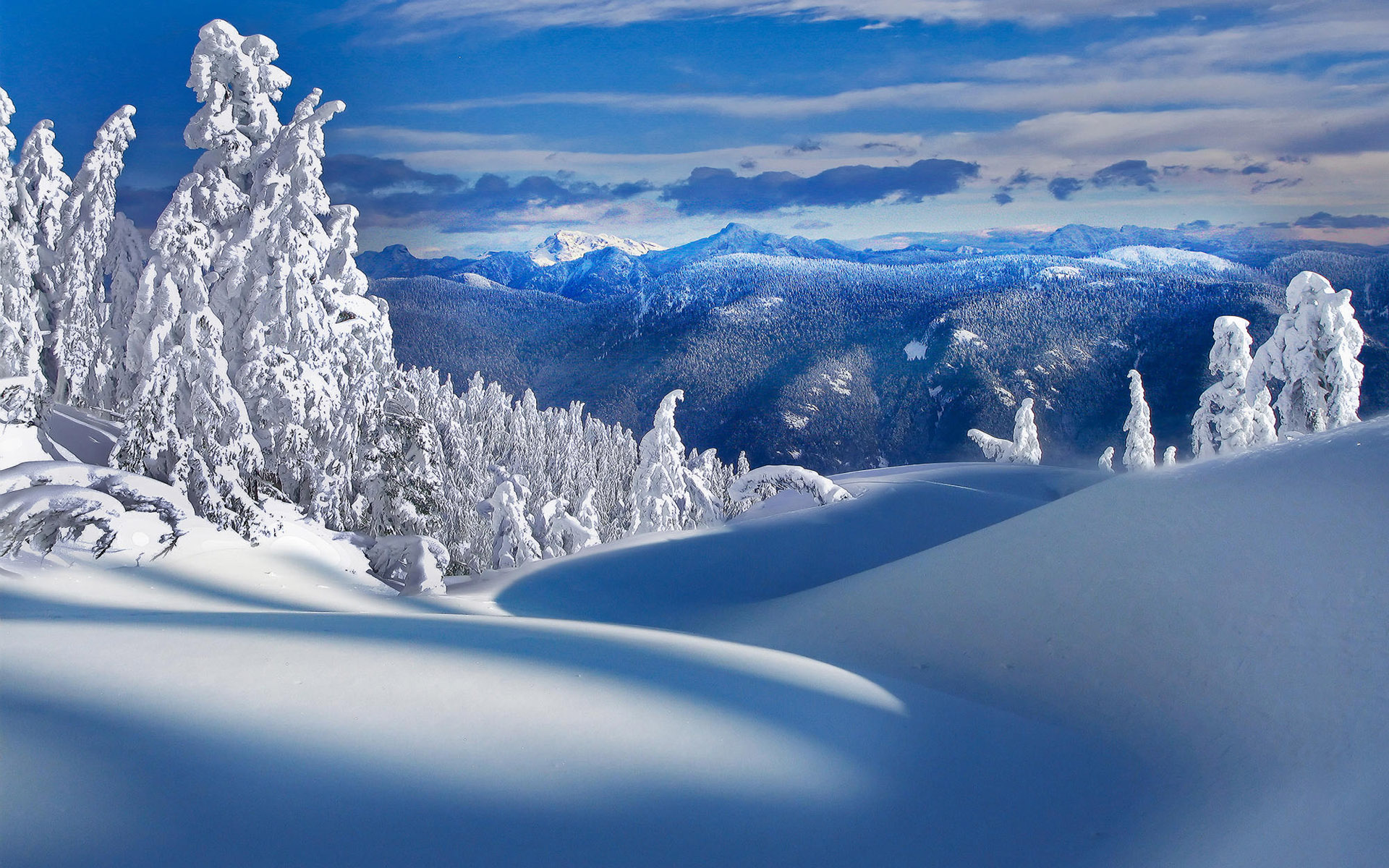 Cool Snowy Wallpaper