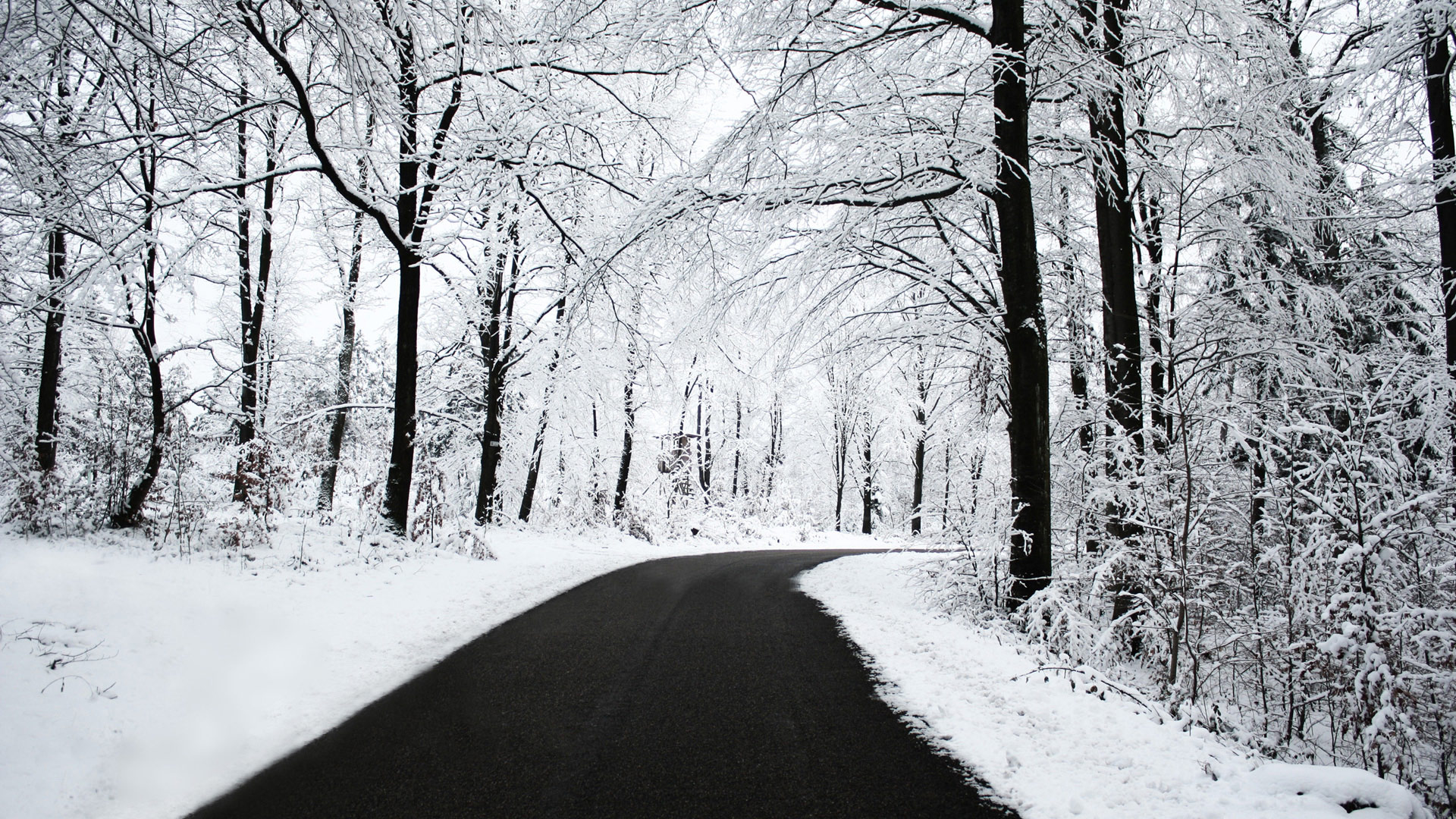 Cool Winter Road Wallpaper