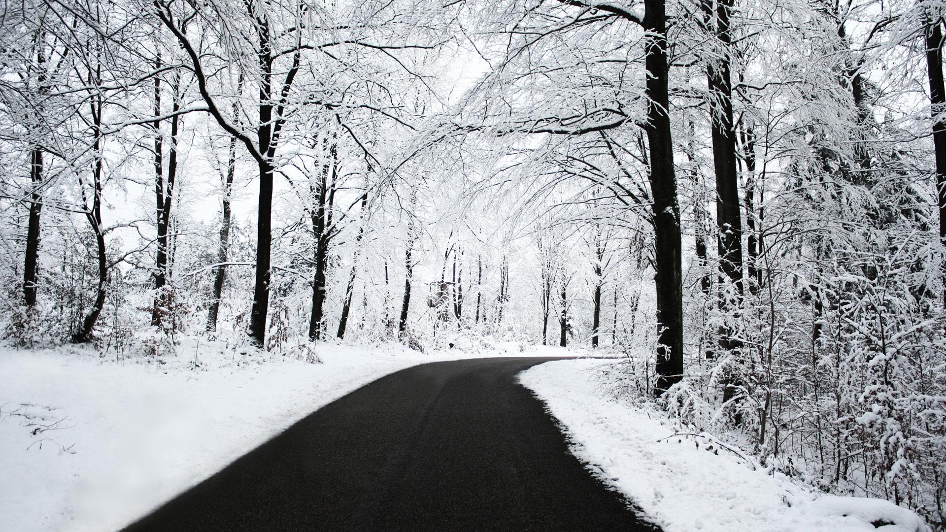 Cool Winter Road Wallpaper