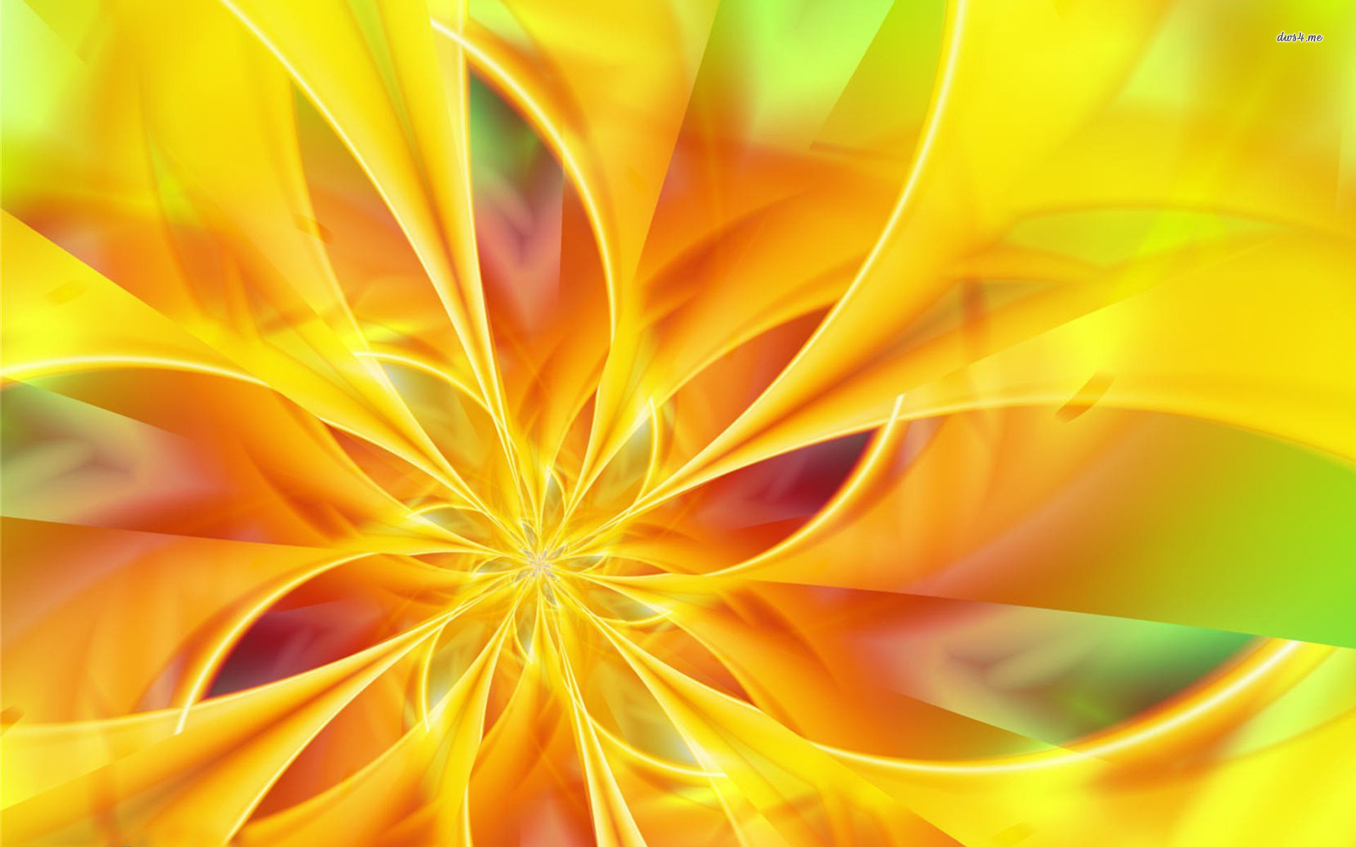Cool Yellow Flowers Wallpaper