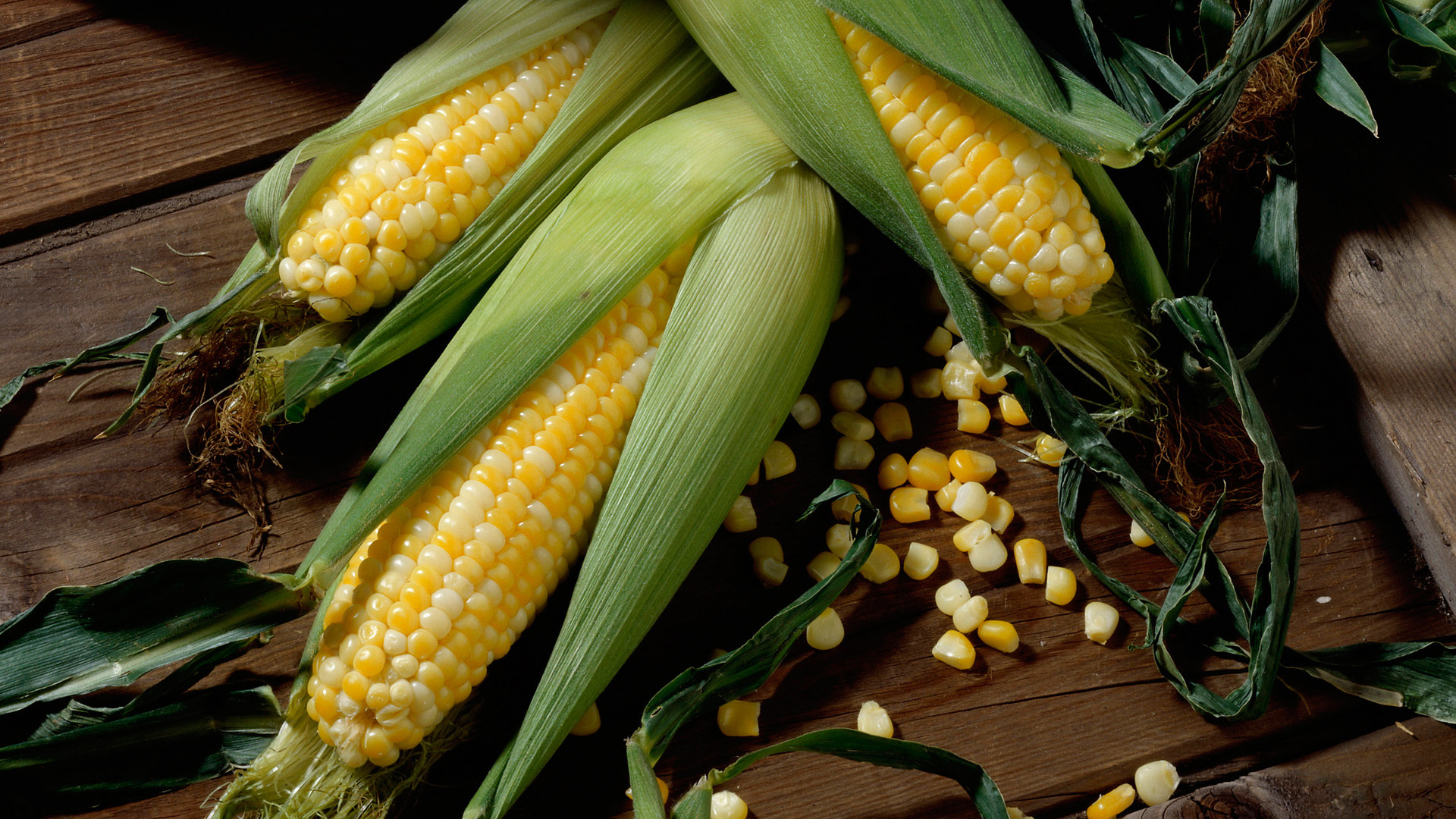 Corn Wallpapers 37688 1920x1080 px