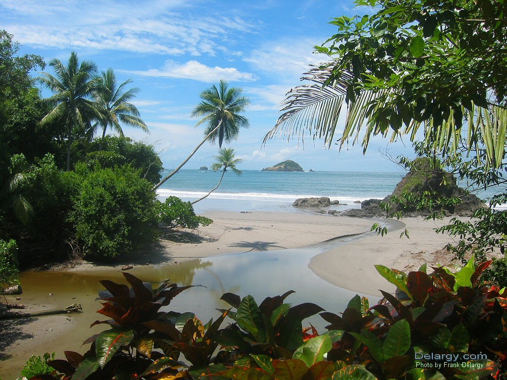 costa rica essays Read costa rica essays and research papers view and download complete sample costa rica essays, instructions, works cited pages, and more.