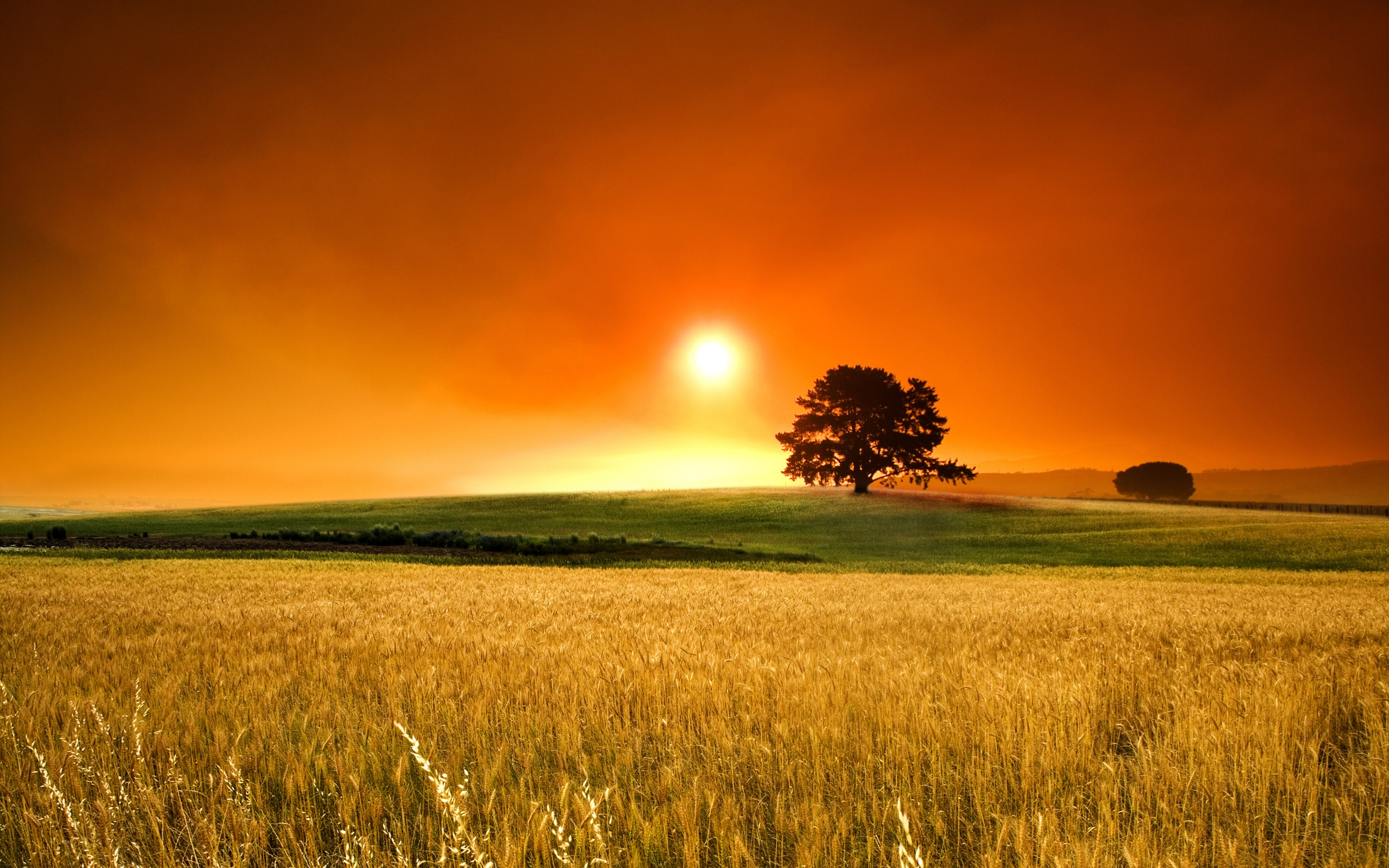 Country Sunset Wallpaper