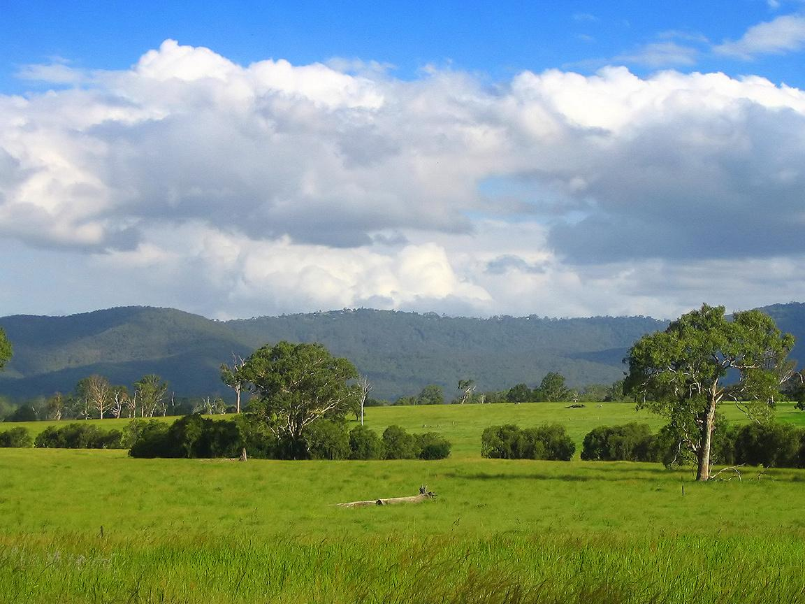 Countryside Queensland Australia free wallpaper in free desktop backgrounds category: Fields-backgrounds.