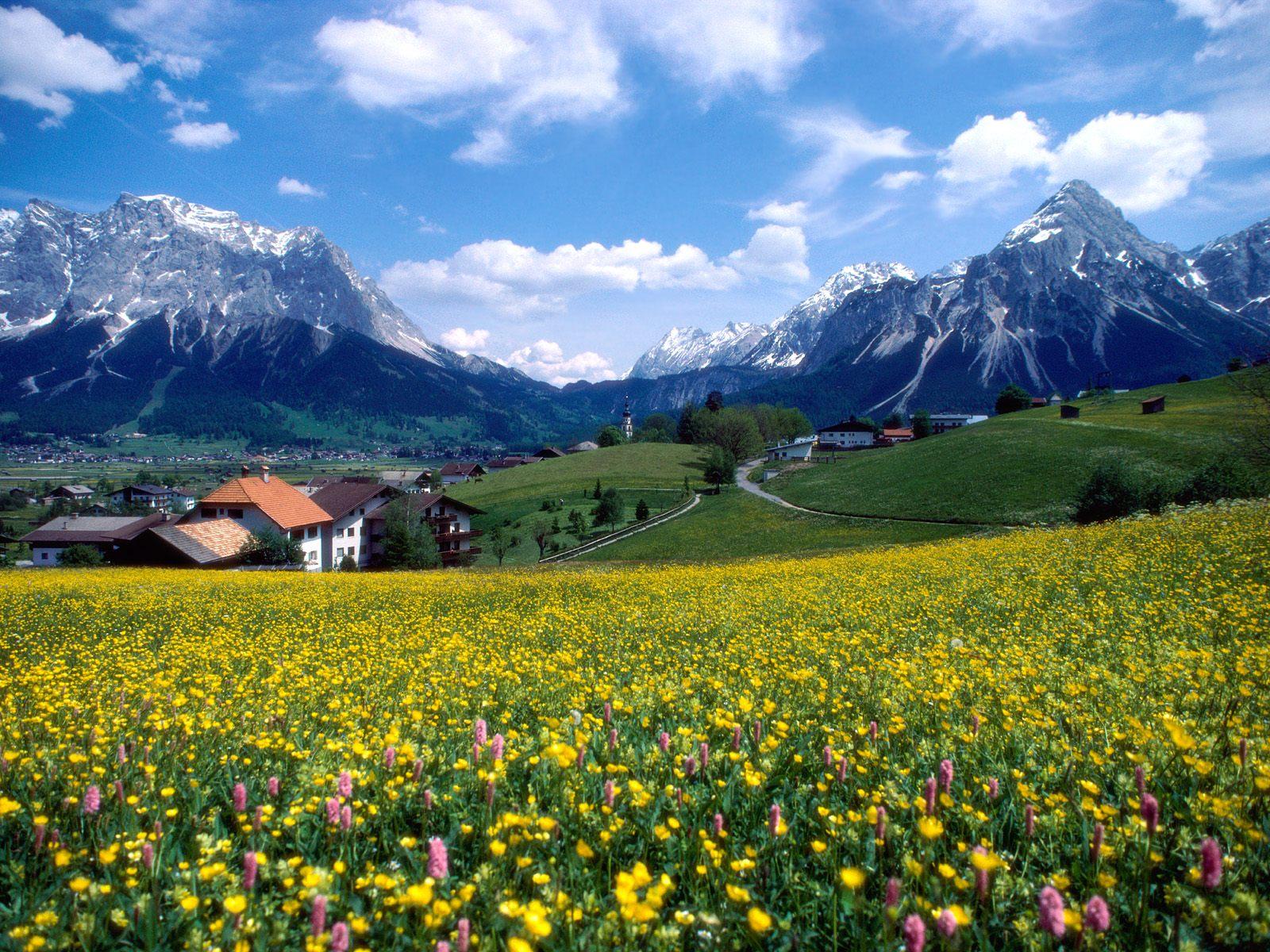 Countryside Splendor (France)