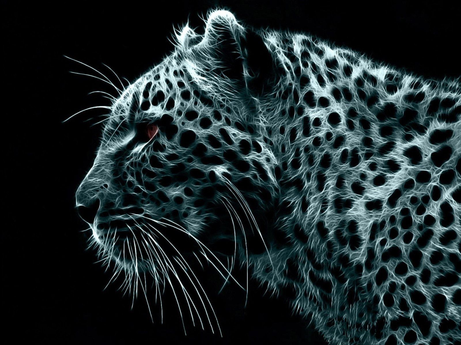 HD Wallpaper of Crazy Leopard Wallpapers Hd, Desktop Wallpaper Crazy Leopard Wallpapers Hd