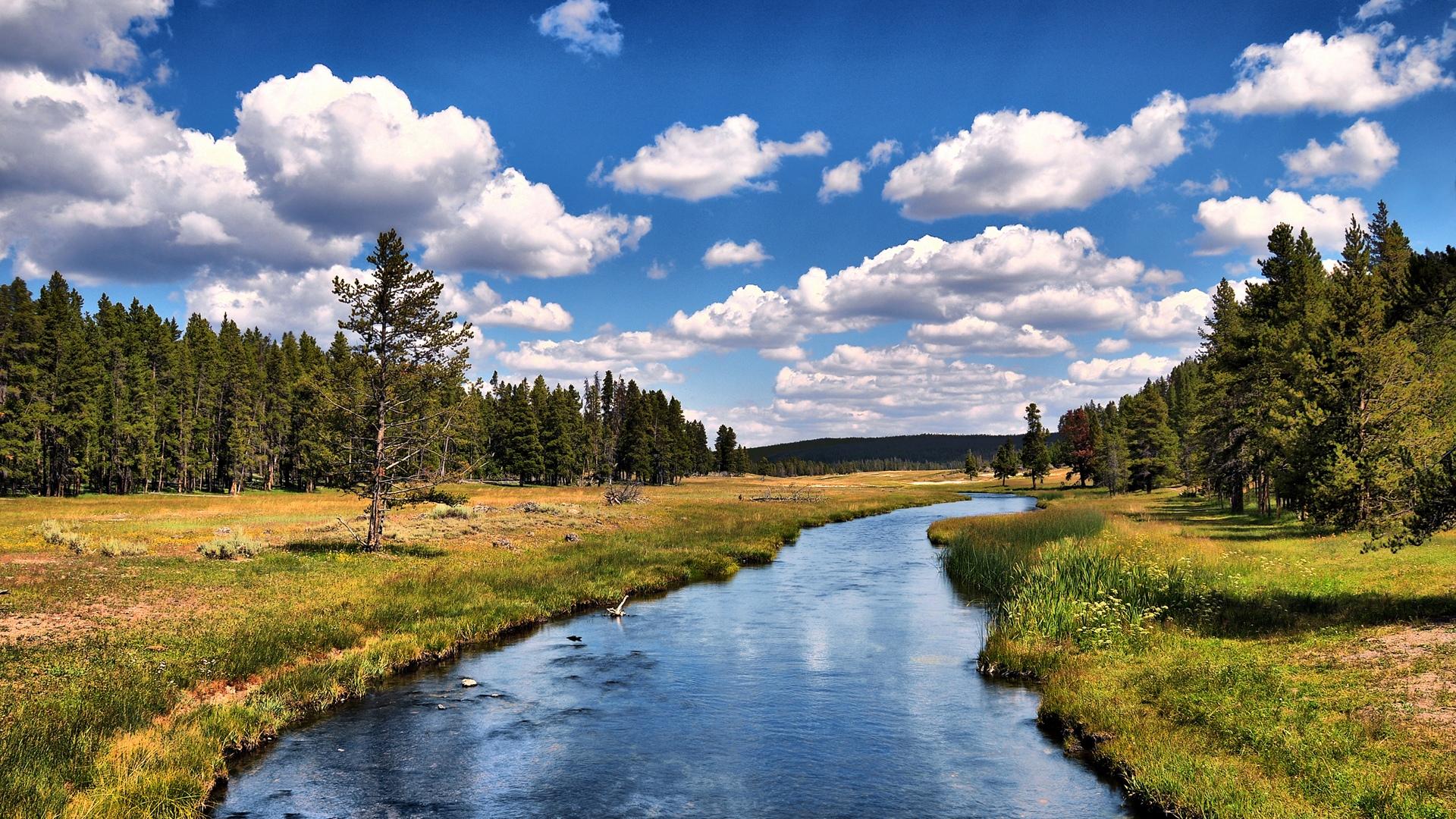 Creek Backgrounds
