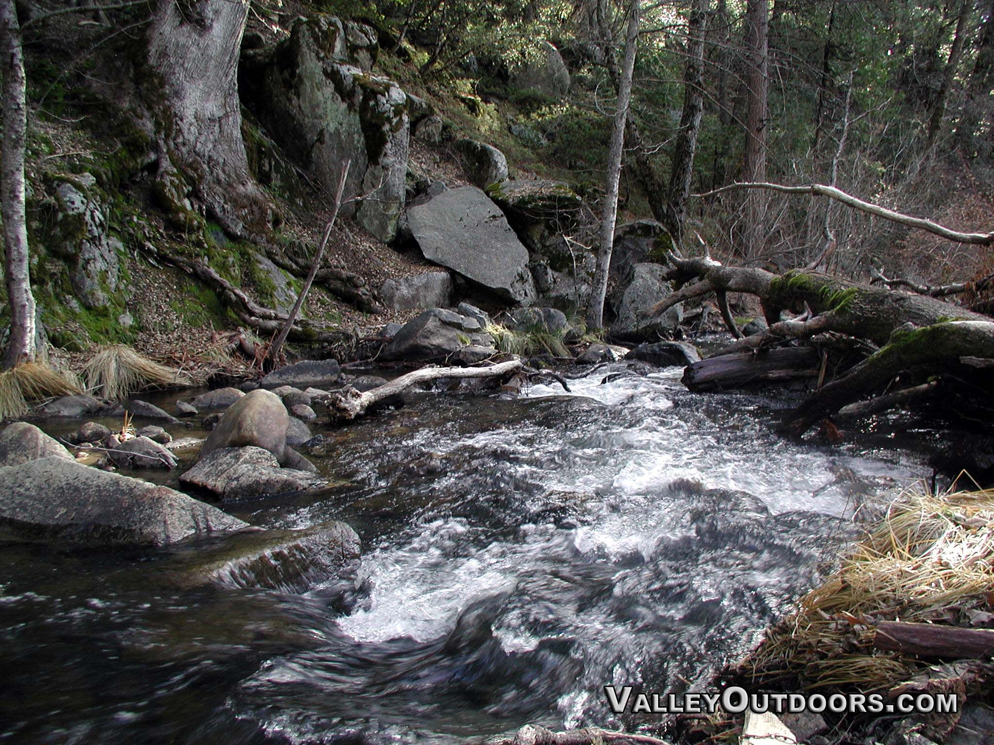 Lewis Creek (4)