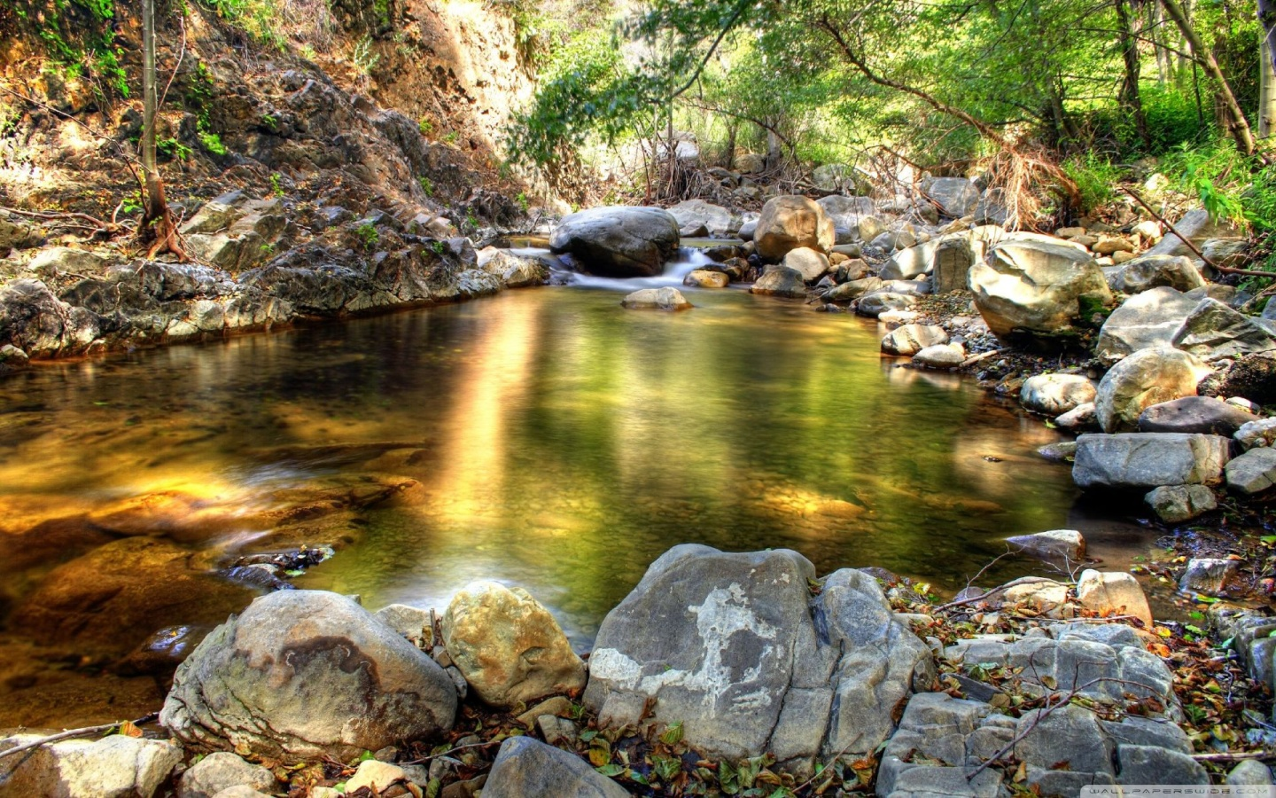Creek Pictures HD