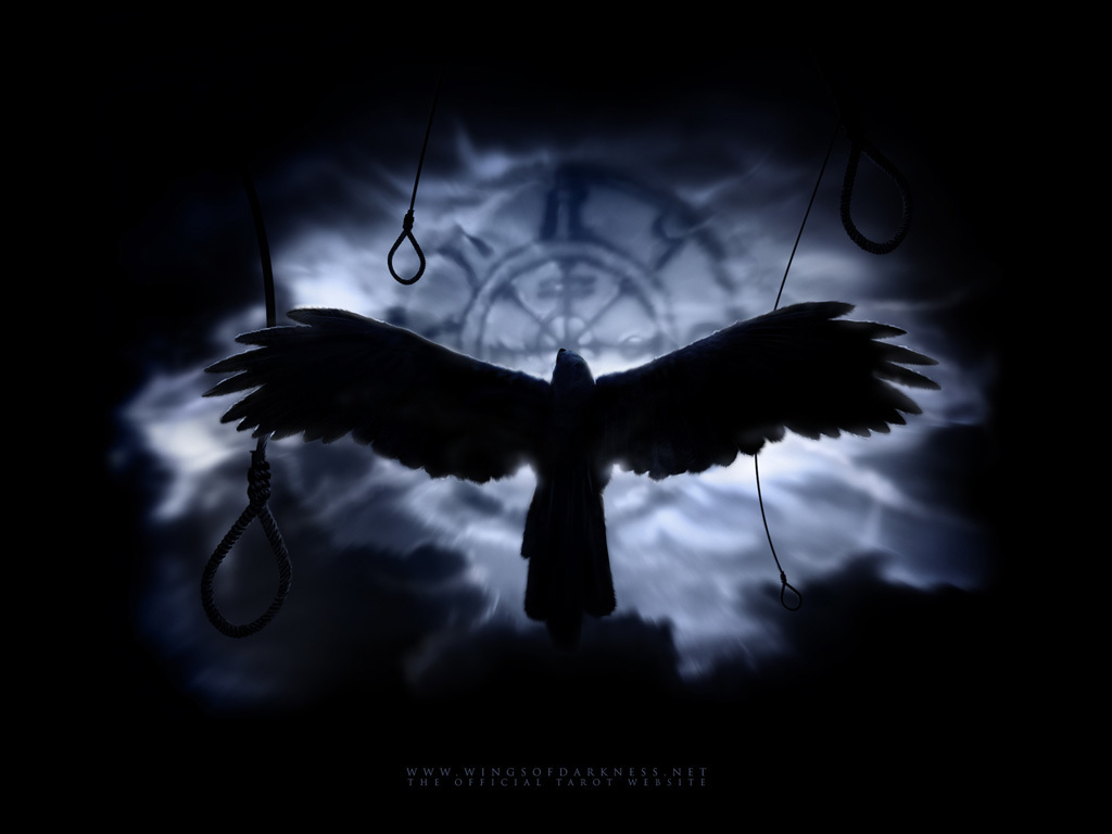 Crow Medicine is the Medicine of Universal Law.