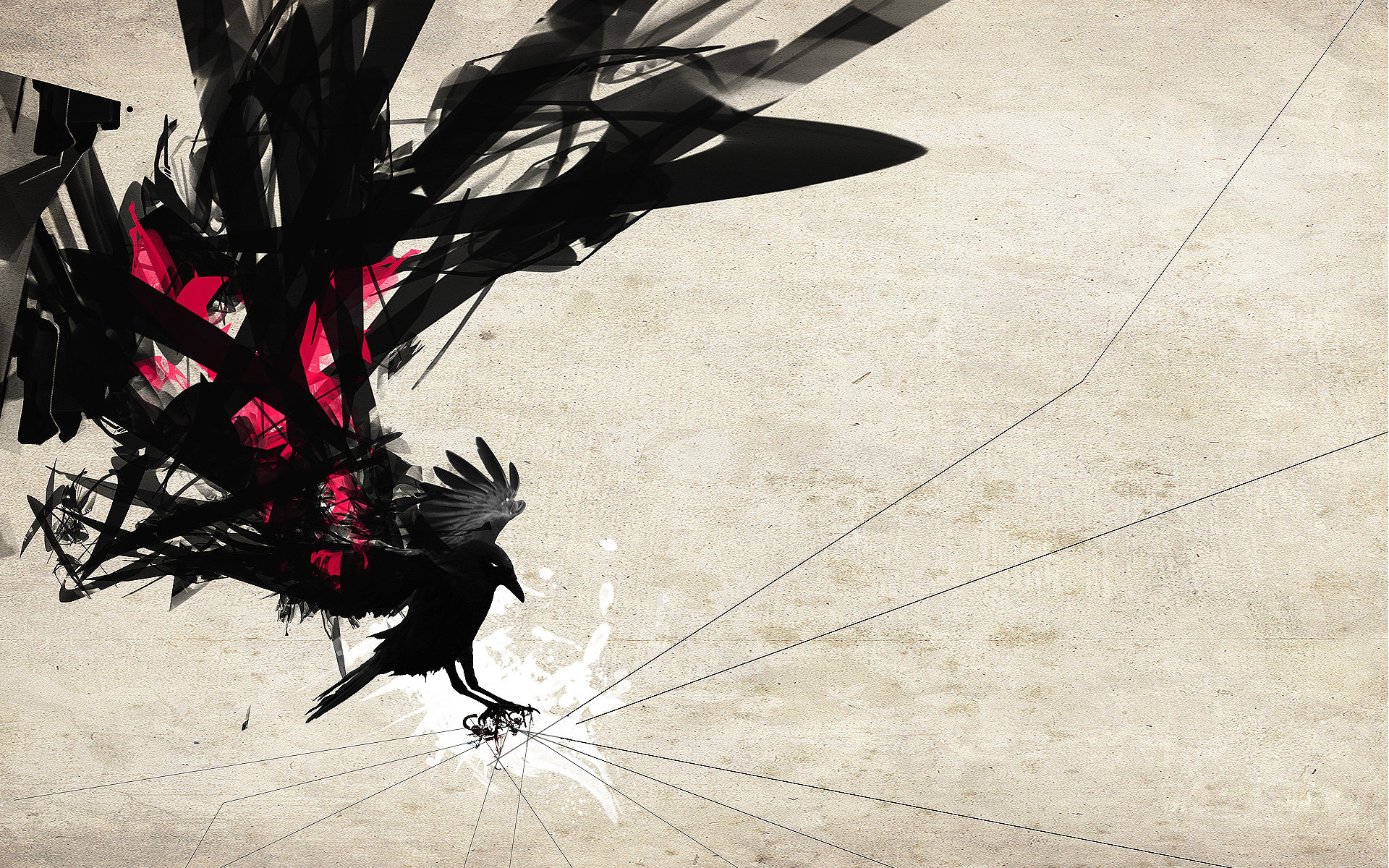 Crow HD Wallpaper