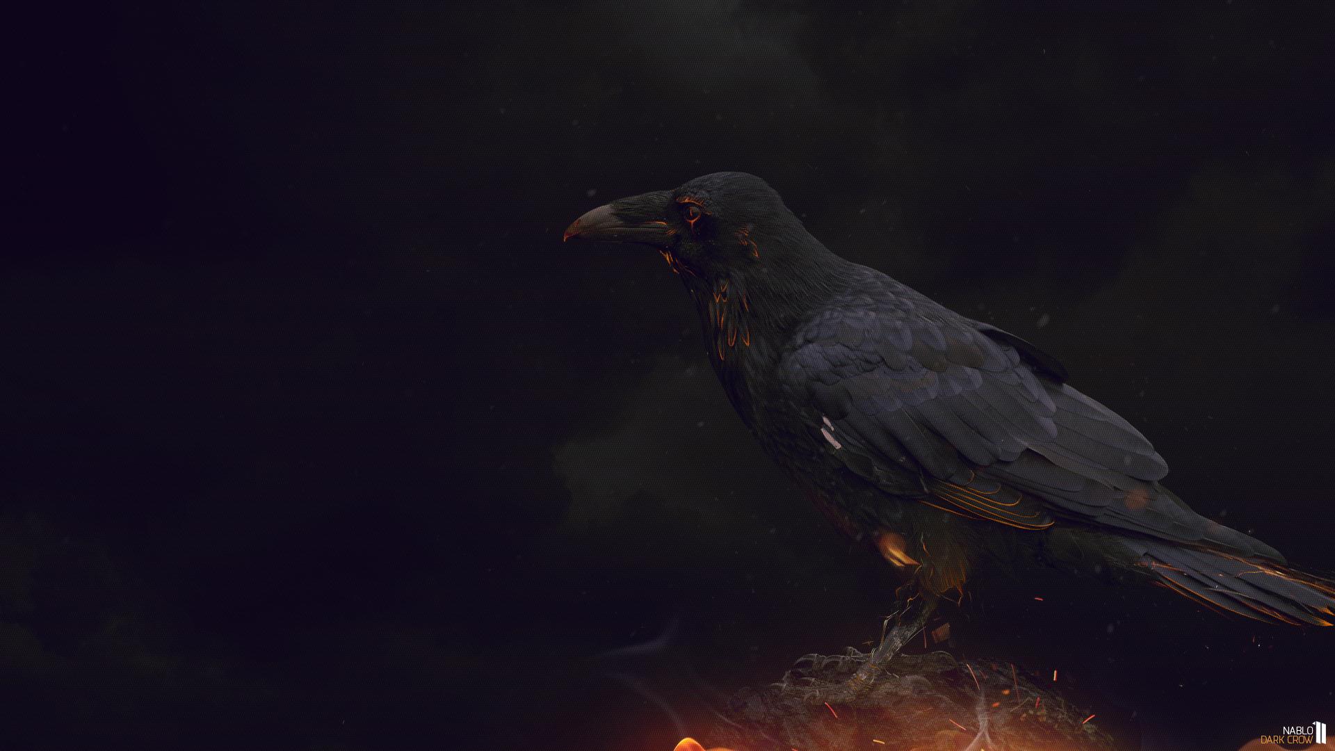 Wallpaper Dark Crow by Nablo92 Wallpaper Dark Crow by Nablo92