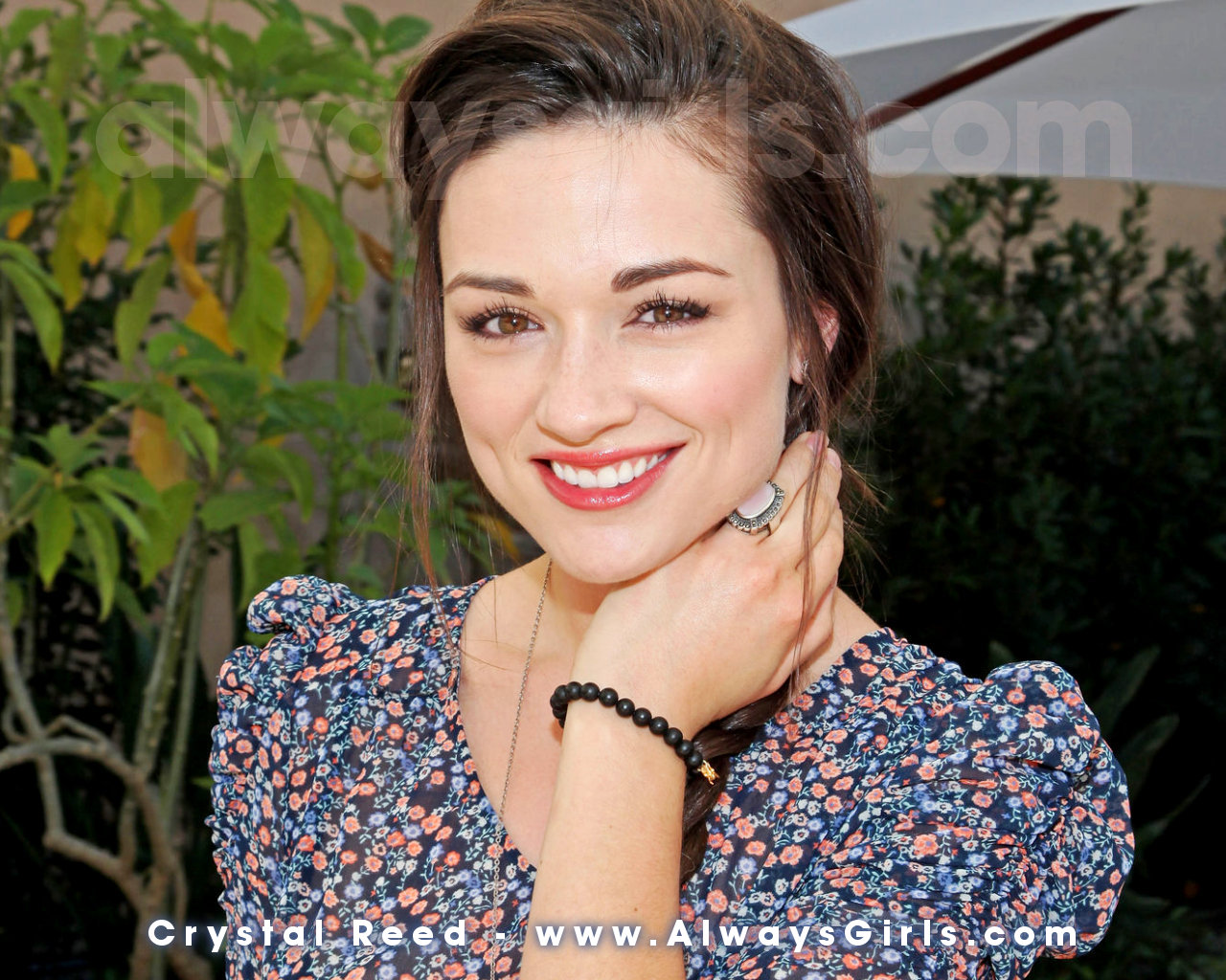 Crystal Reed Pictures