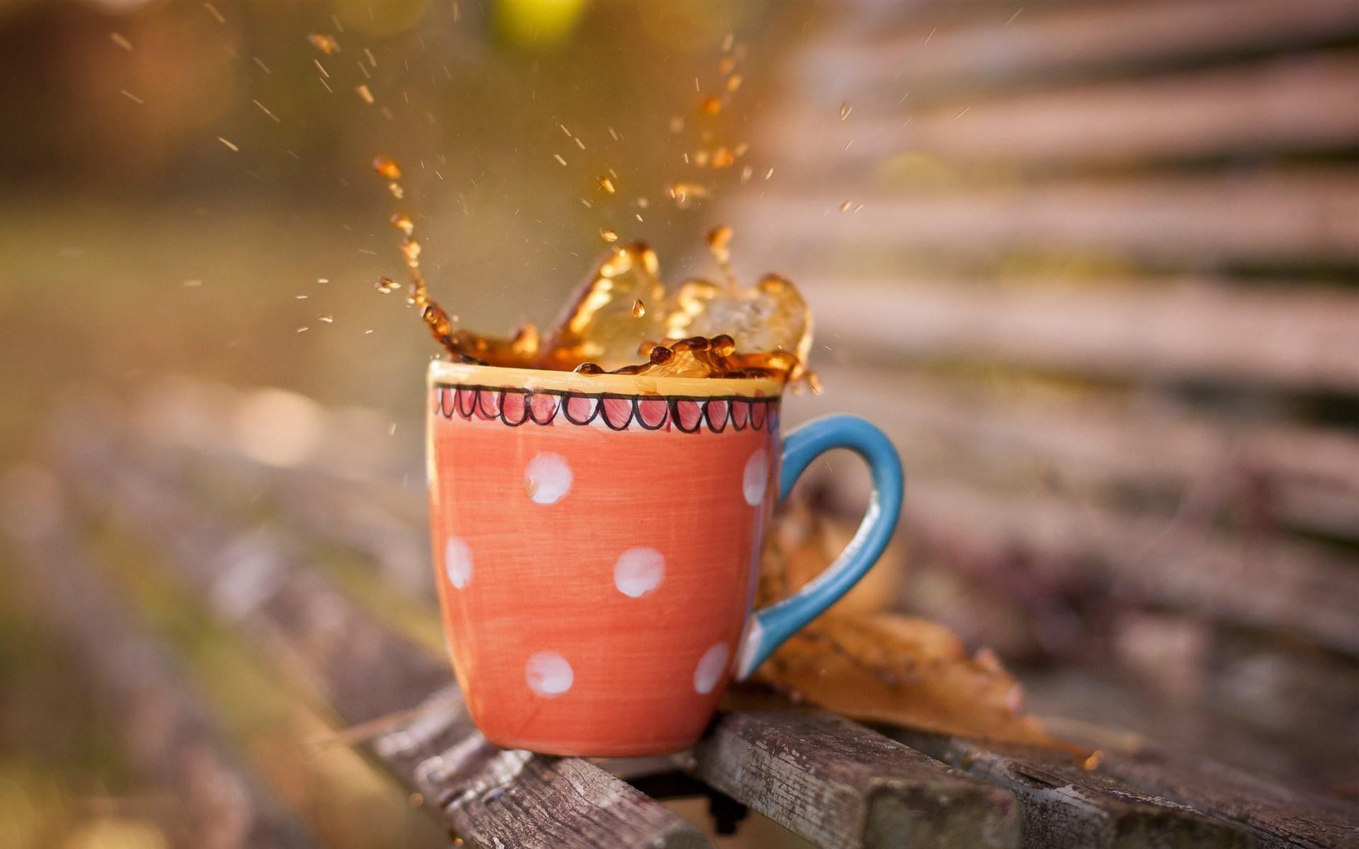 Cup Tea  Splash Bench
