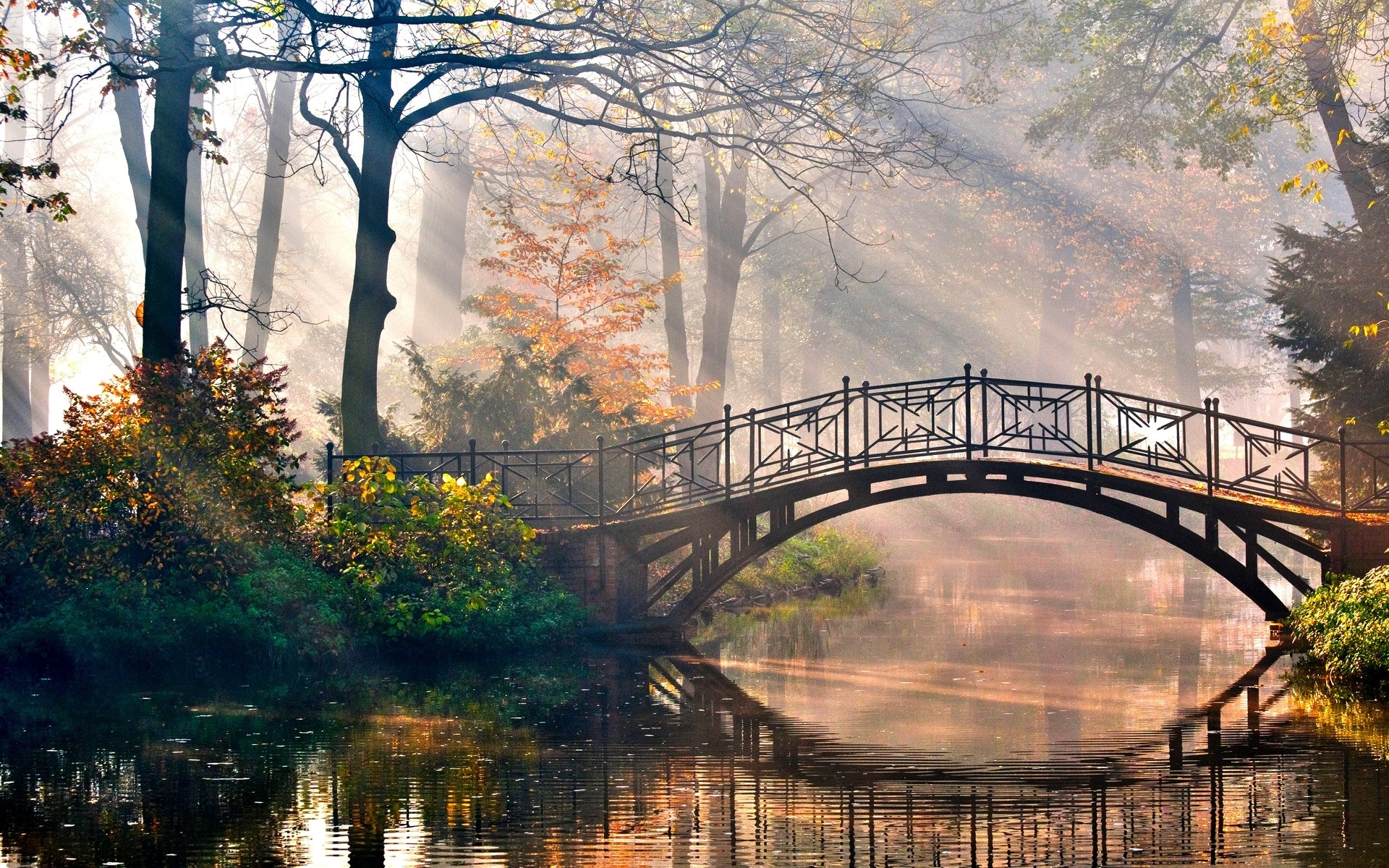 Cute Bridge Wallpaper