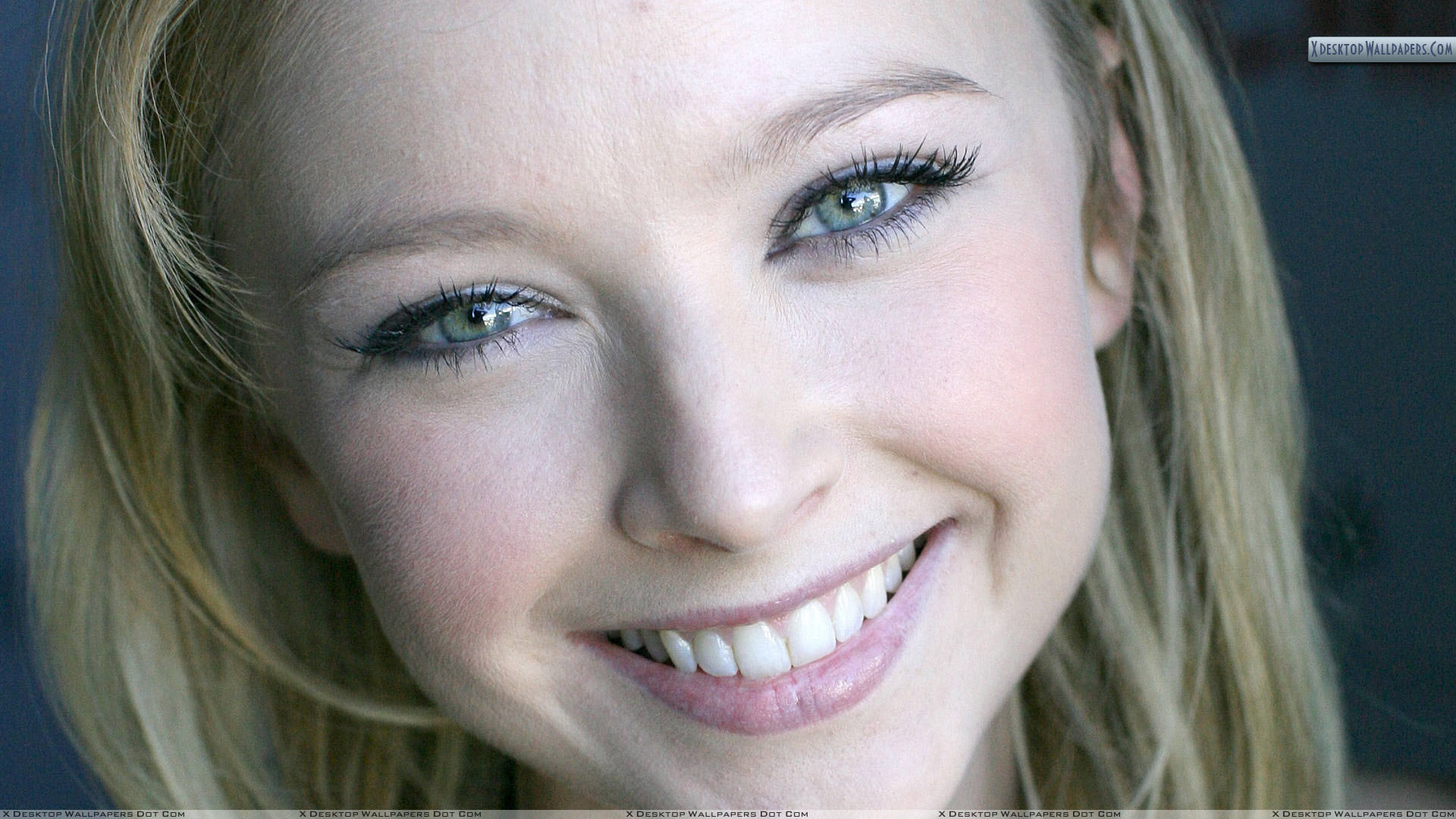 Elisabeth Harnois Smiling Cute Face Closeup Download 24 ...
