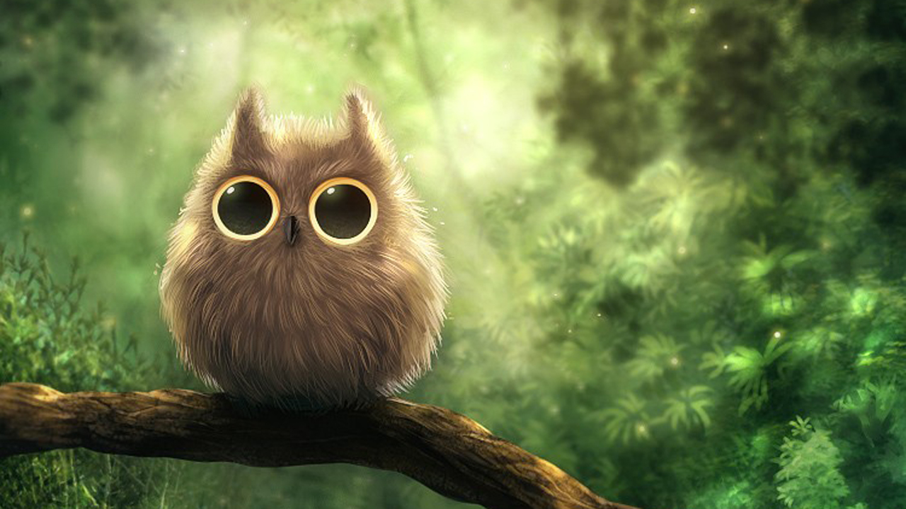 Image for cute owl wallpaper