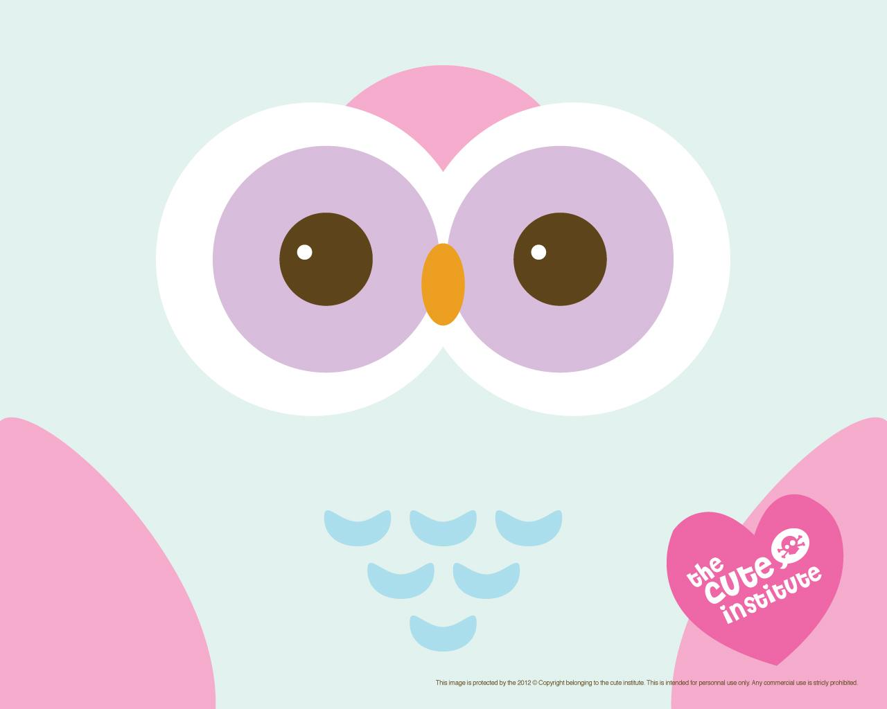 ... cute-owl-hd-wallpaper ...