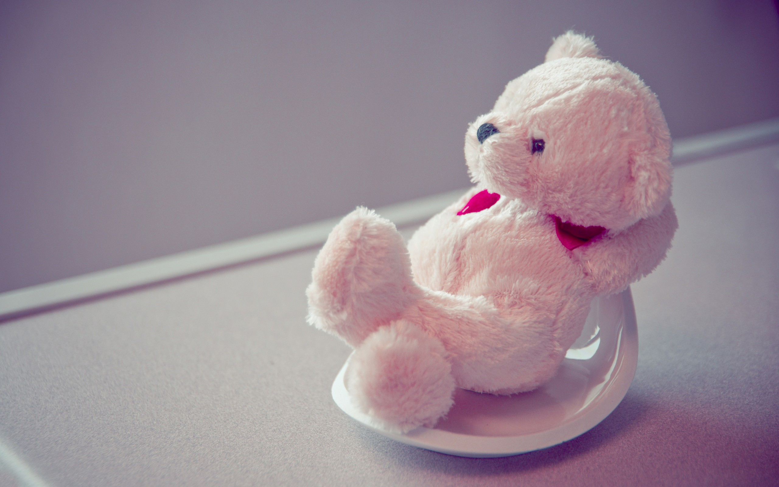 cute pink teddy bear