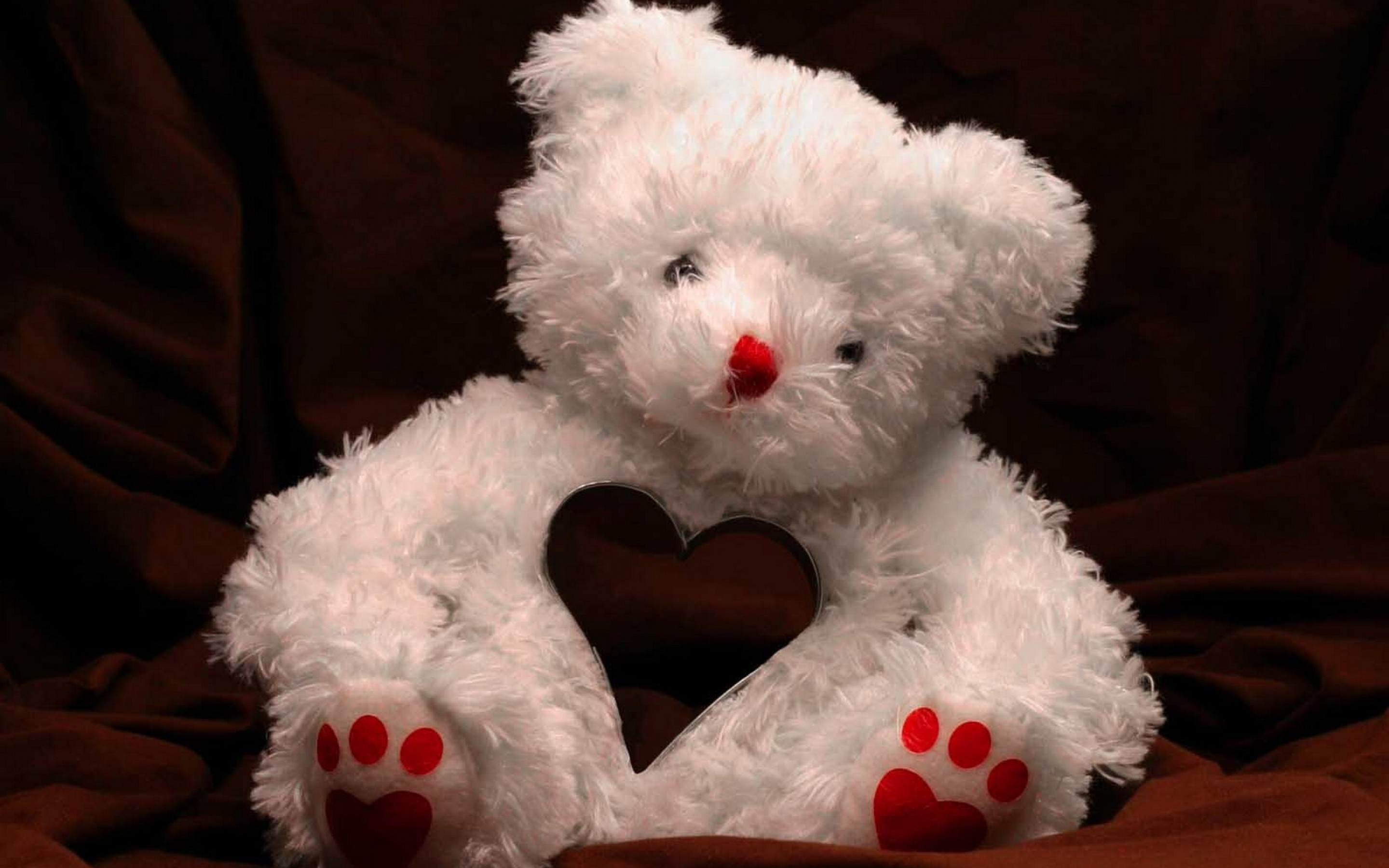 teddy bear5 300x187 20+ Full Size Cute Teddy Bears HD Wallpapers
