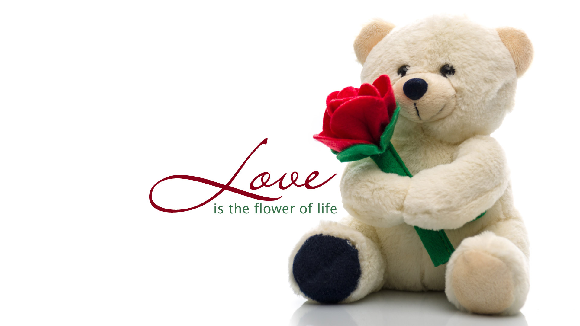 Cute Teddy Bear Love