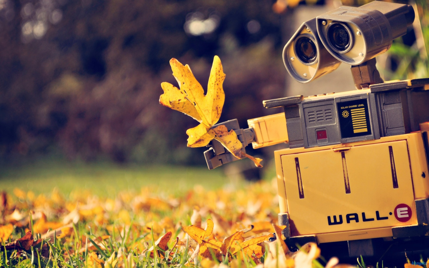 Cute Wall E Wallpaper