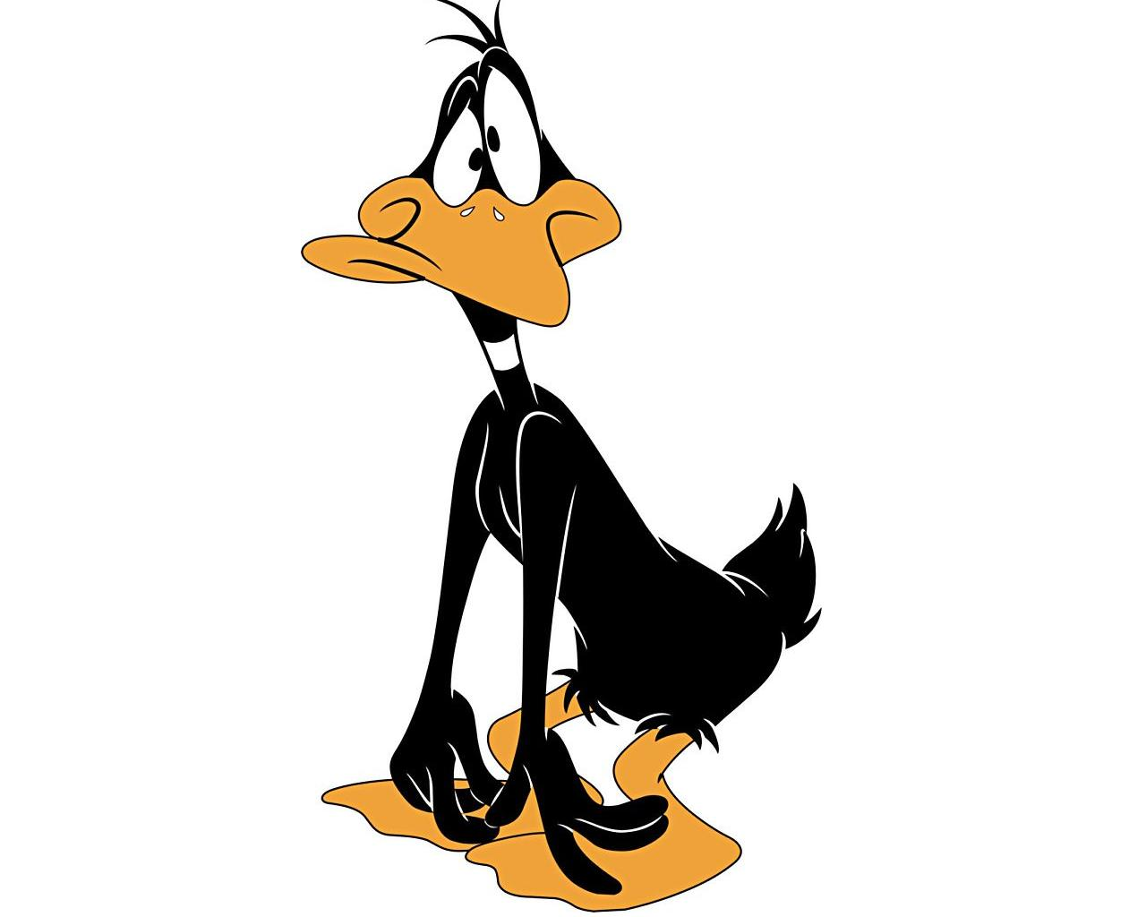 Daffy Duck Cartoons