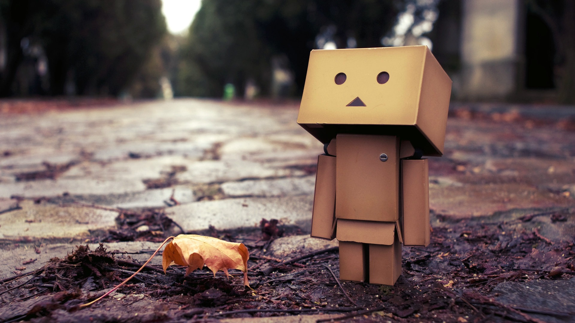 Danbo wallpaper 1920x1080 71678