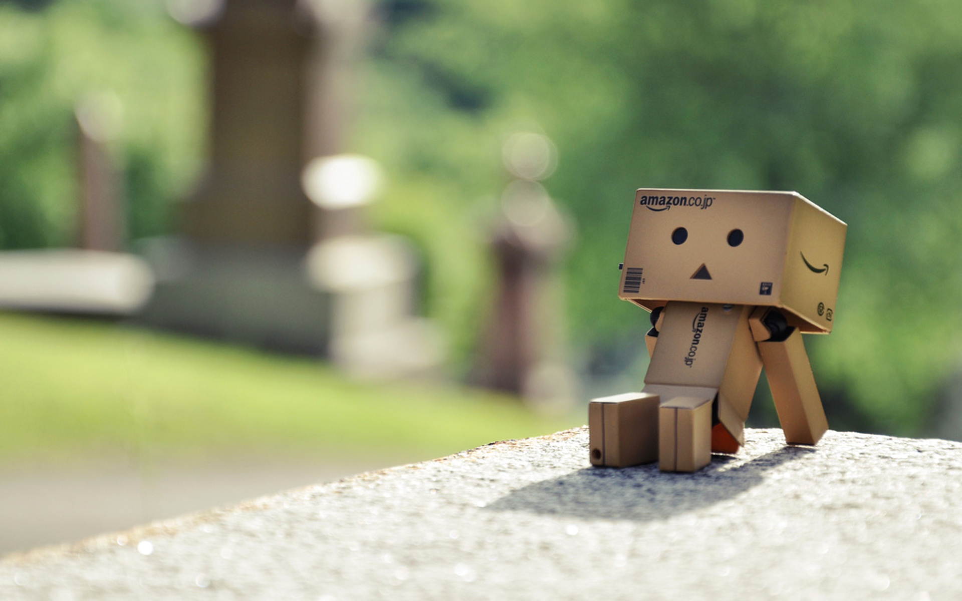 Danbo Wallpaper 06