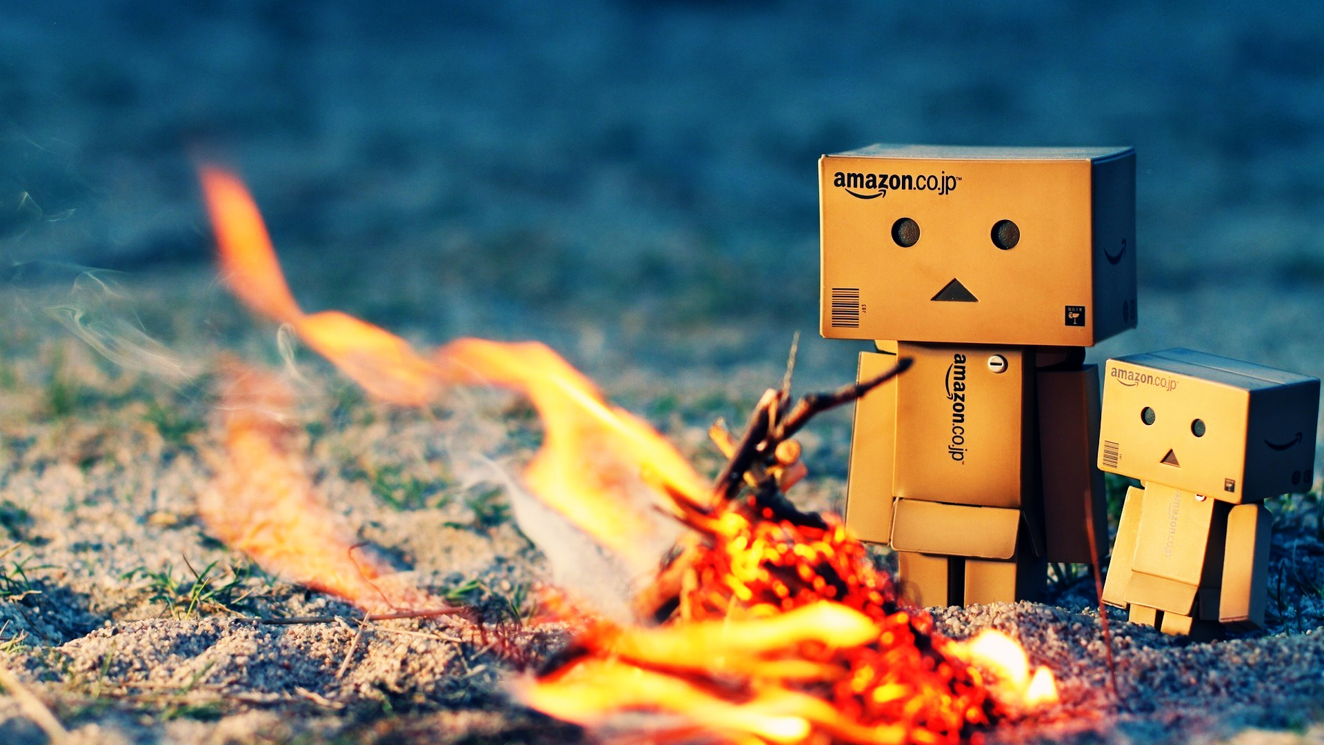 danbo-warming-fire-wallpapers_27357_1920x1080.jpg