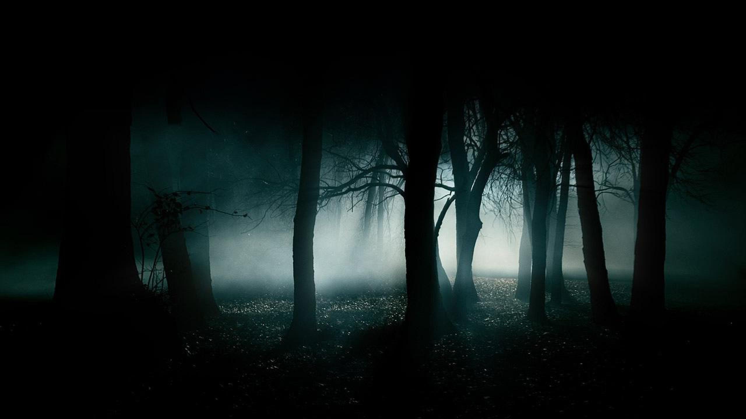 ... Dark Wallpaper ...