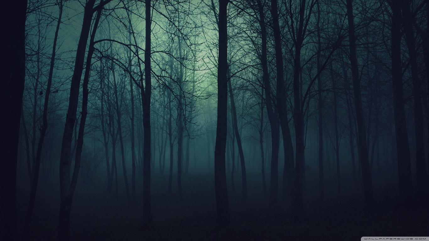 Dark Forest HD