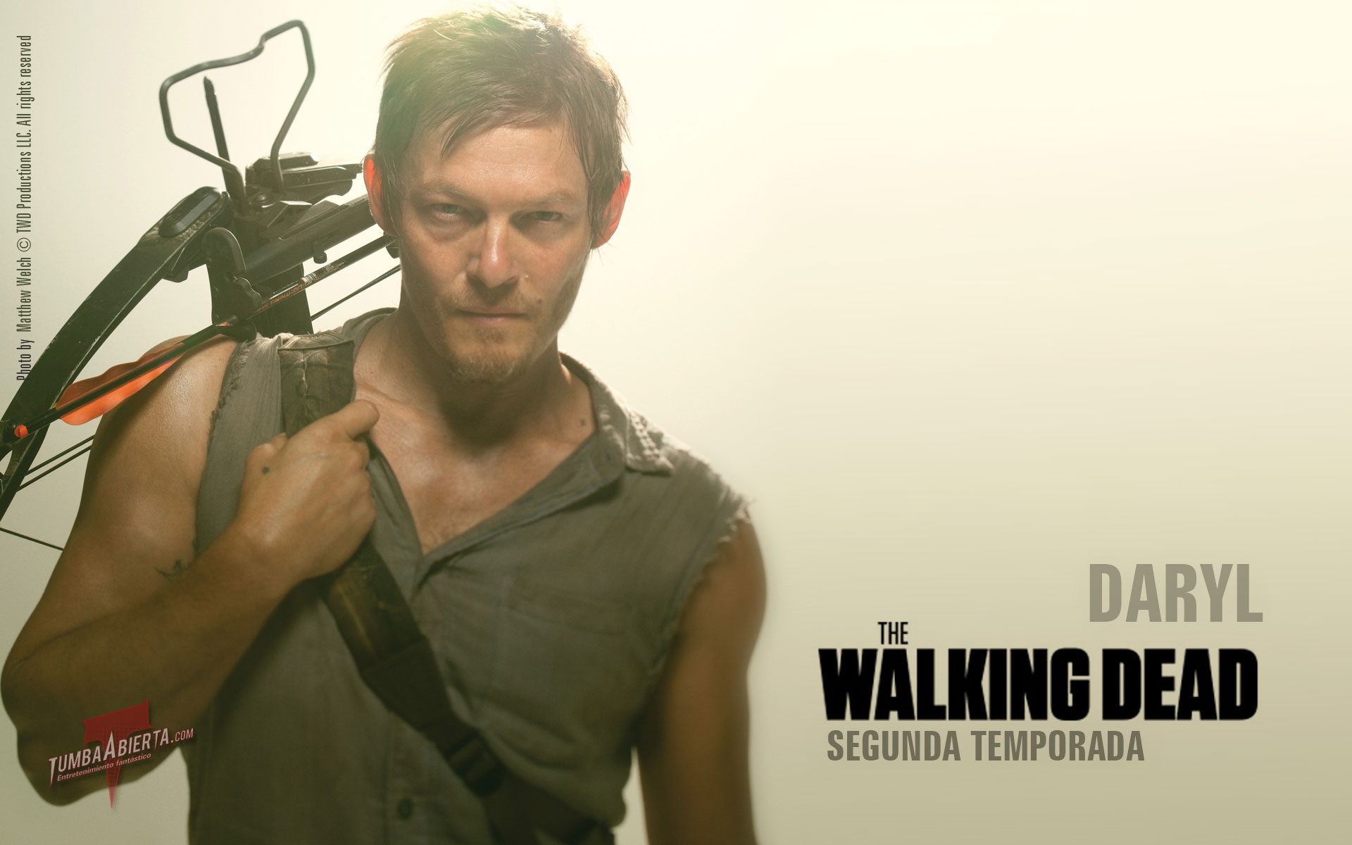 TV Show - The Walking Dead Norman Reedus Daryl Dixon Wallpaper