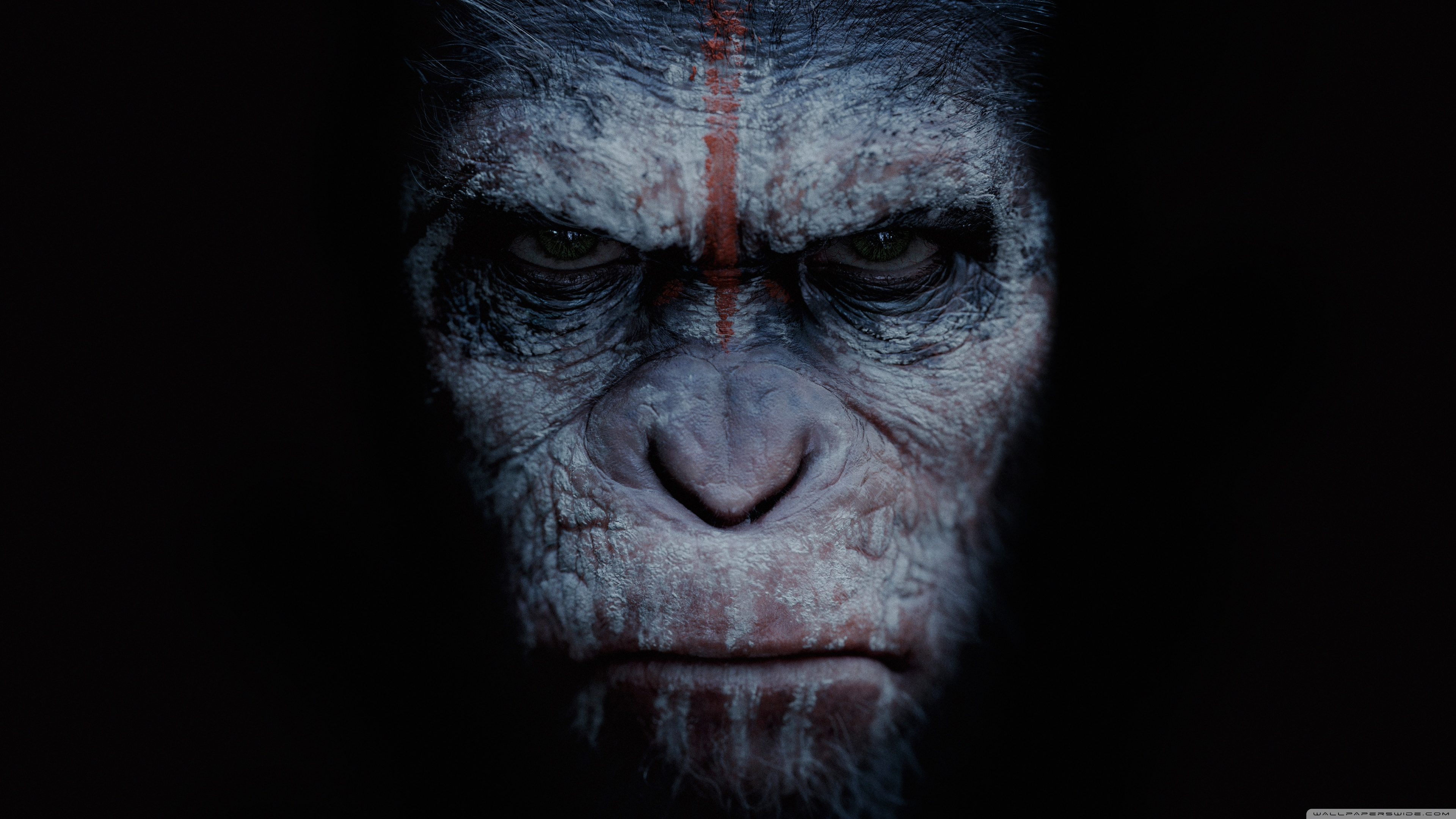 Dawn of the Planet of the Apes Logo Wallpaper