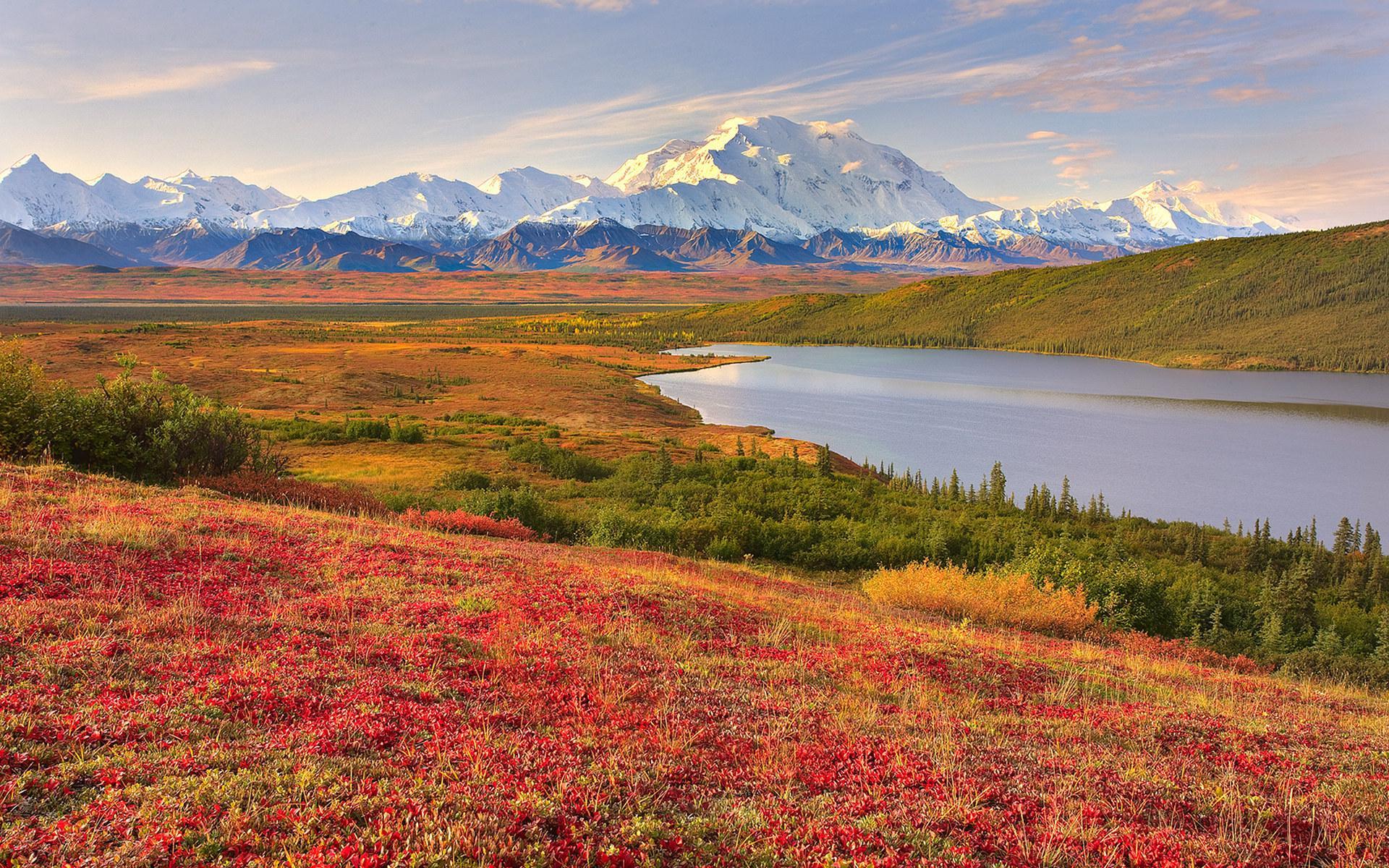 Denali National Park