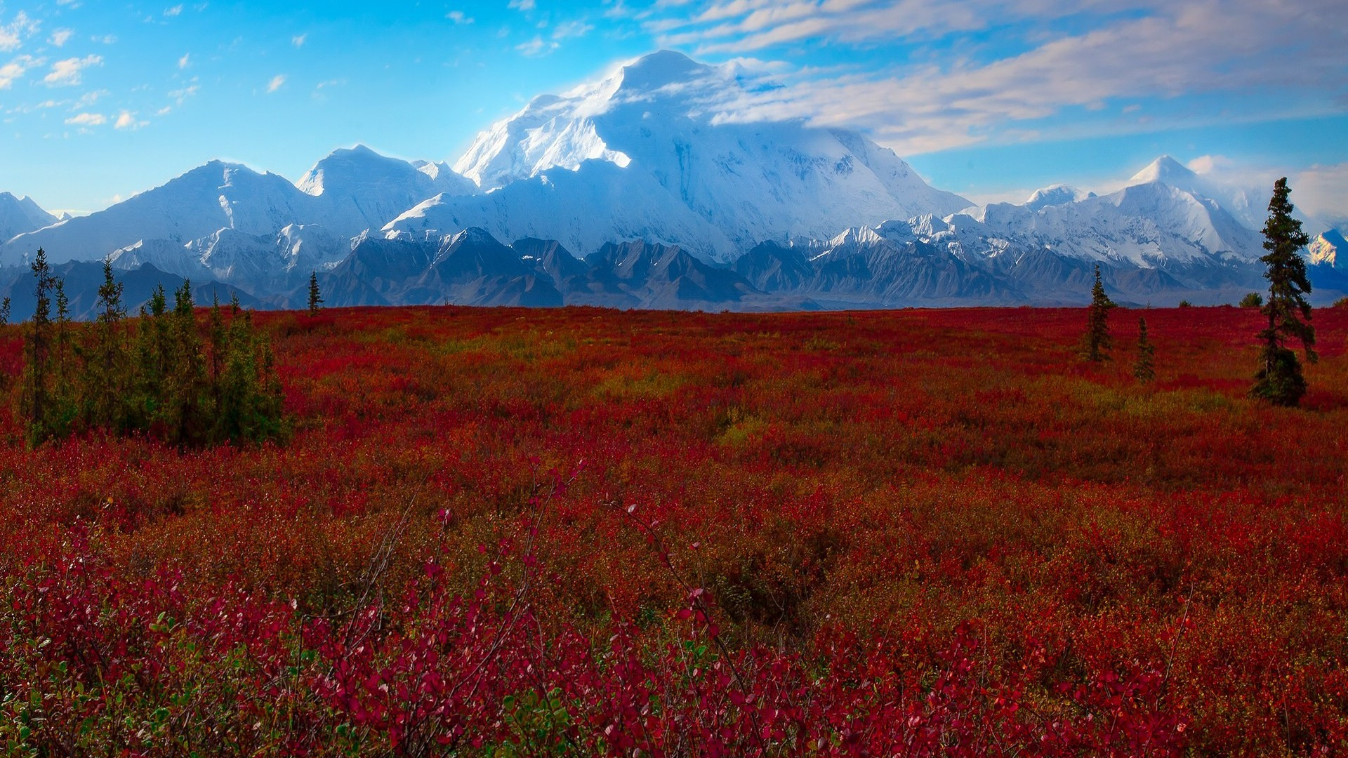 Denali National Park 2 Wallpaper HD