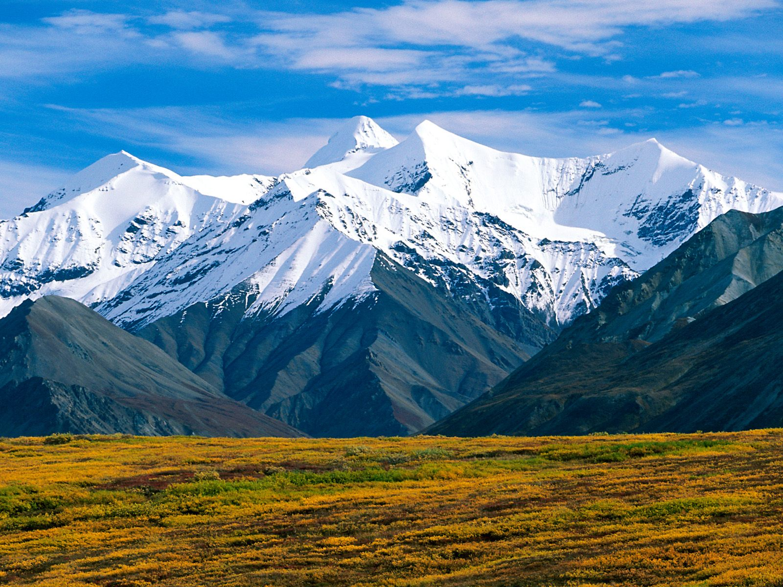 Excellent Nature Denali National Park Alaska Desktop Image Hd Wallpaper Background 1600x1200px