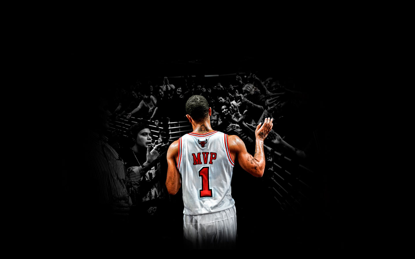 Free Derrick Rose Wallpaper