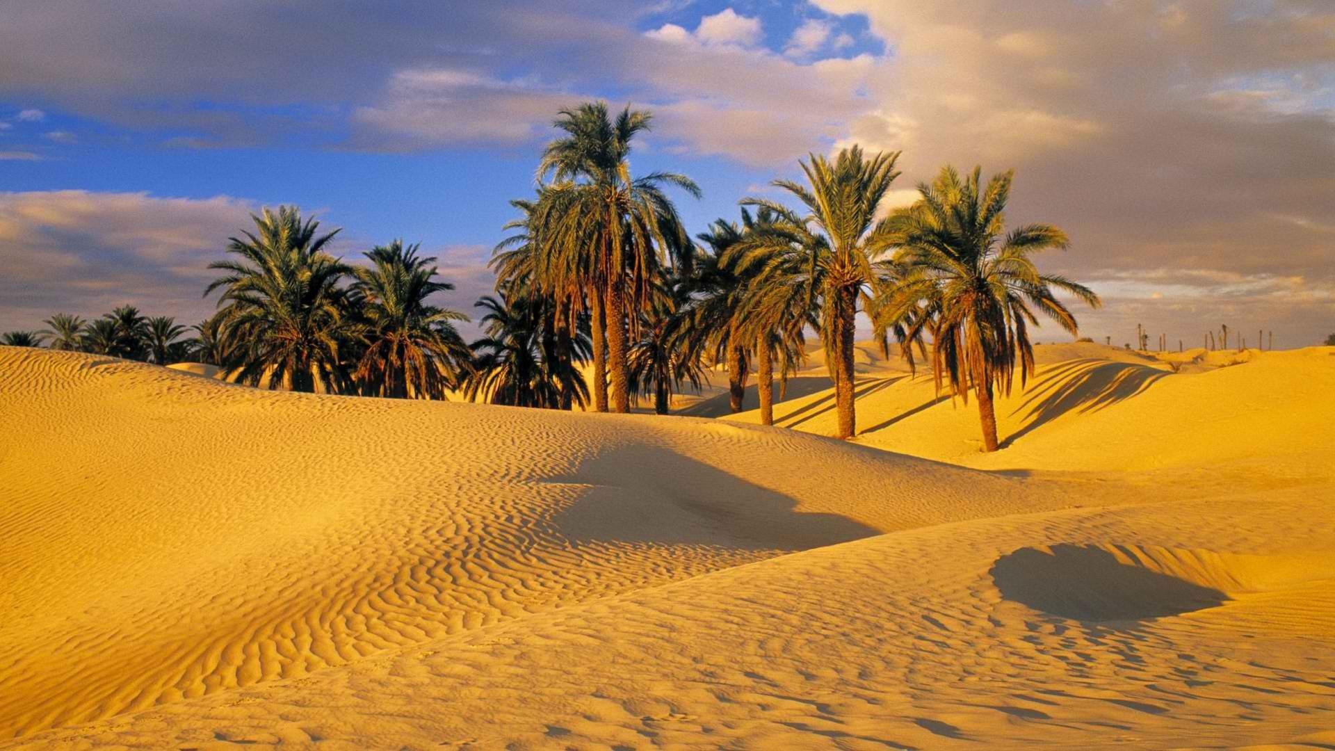 Desert; Desert; Desert; Desert; Desert ...