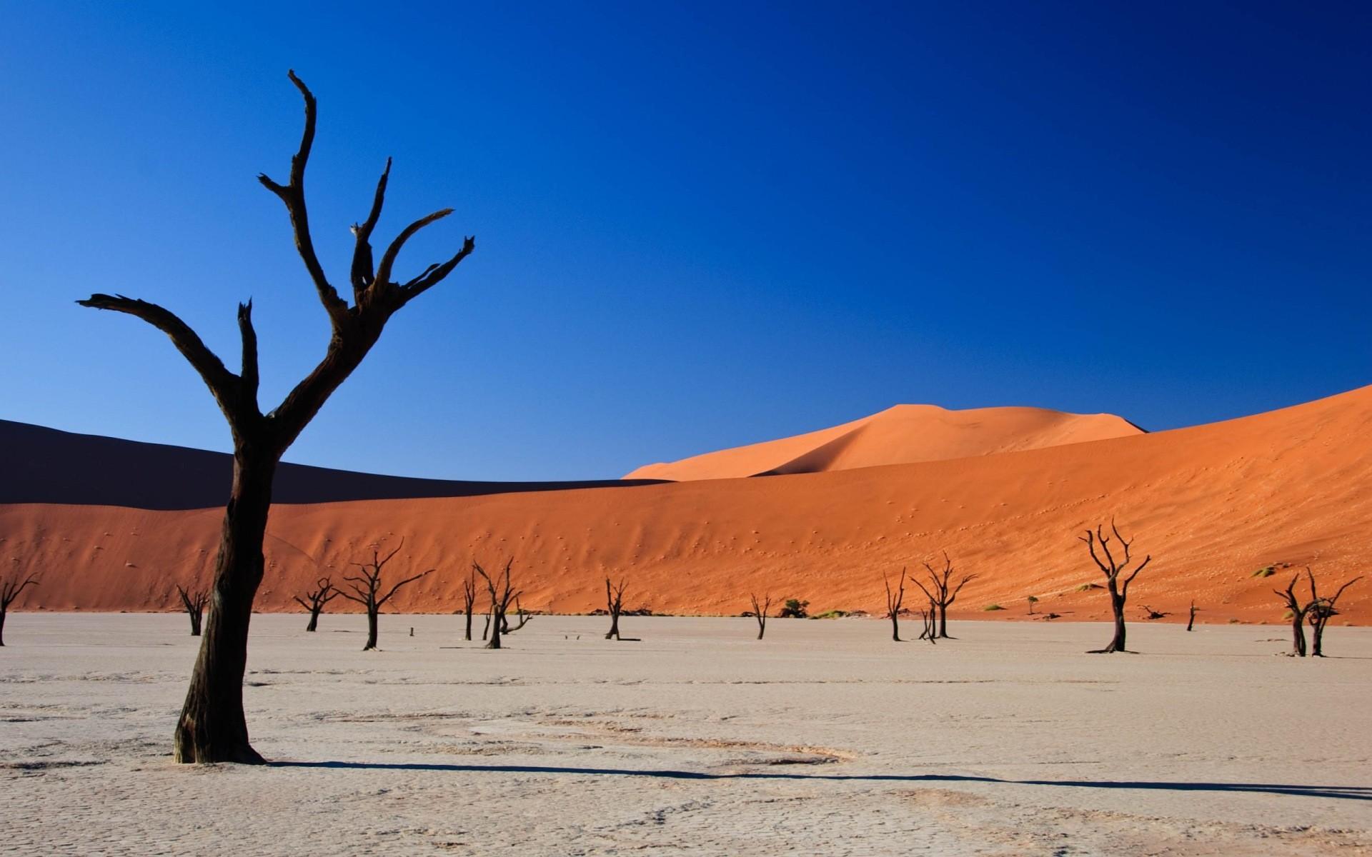 Free Desert Landscape Wallpaper