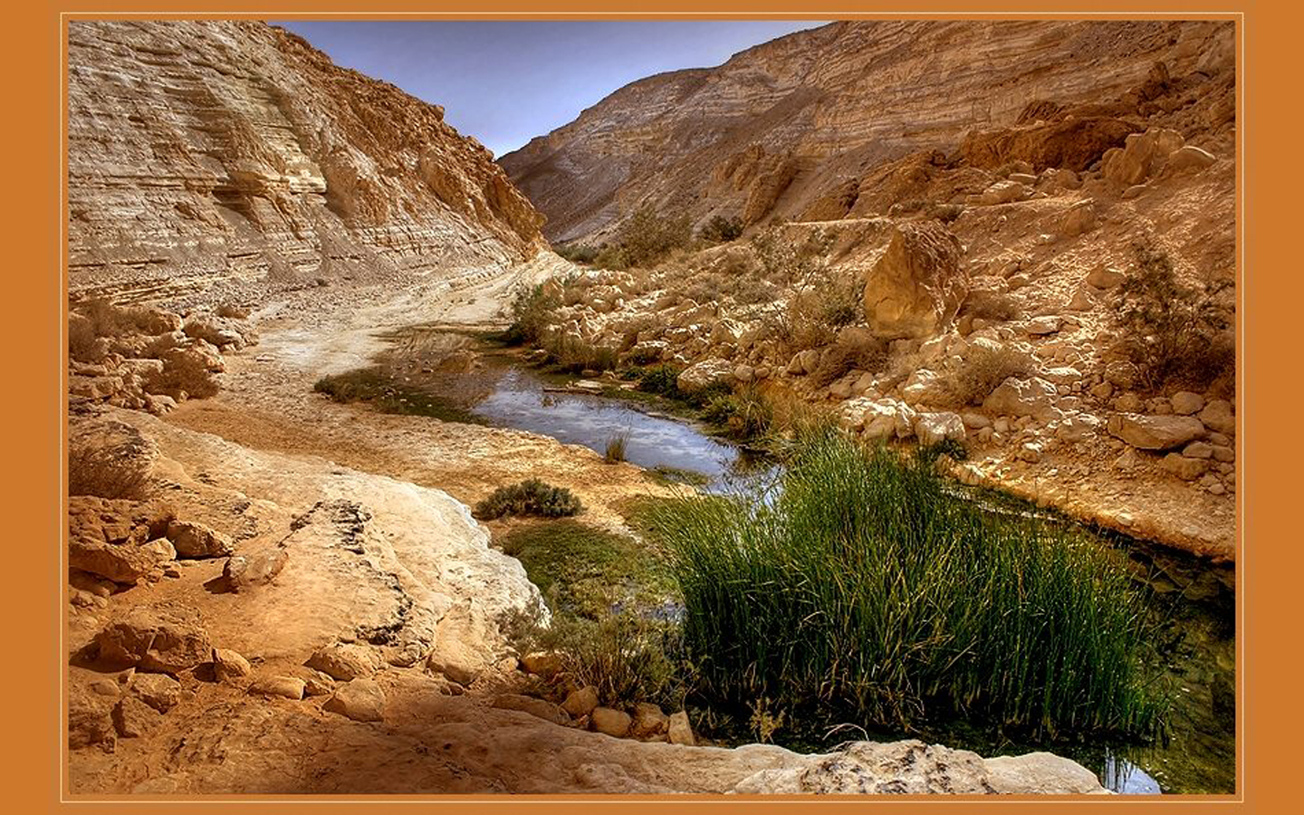 Desert stream nature 1280x768