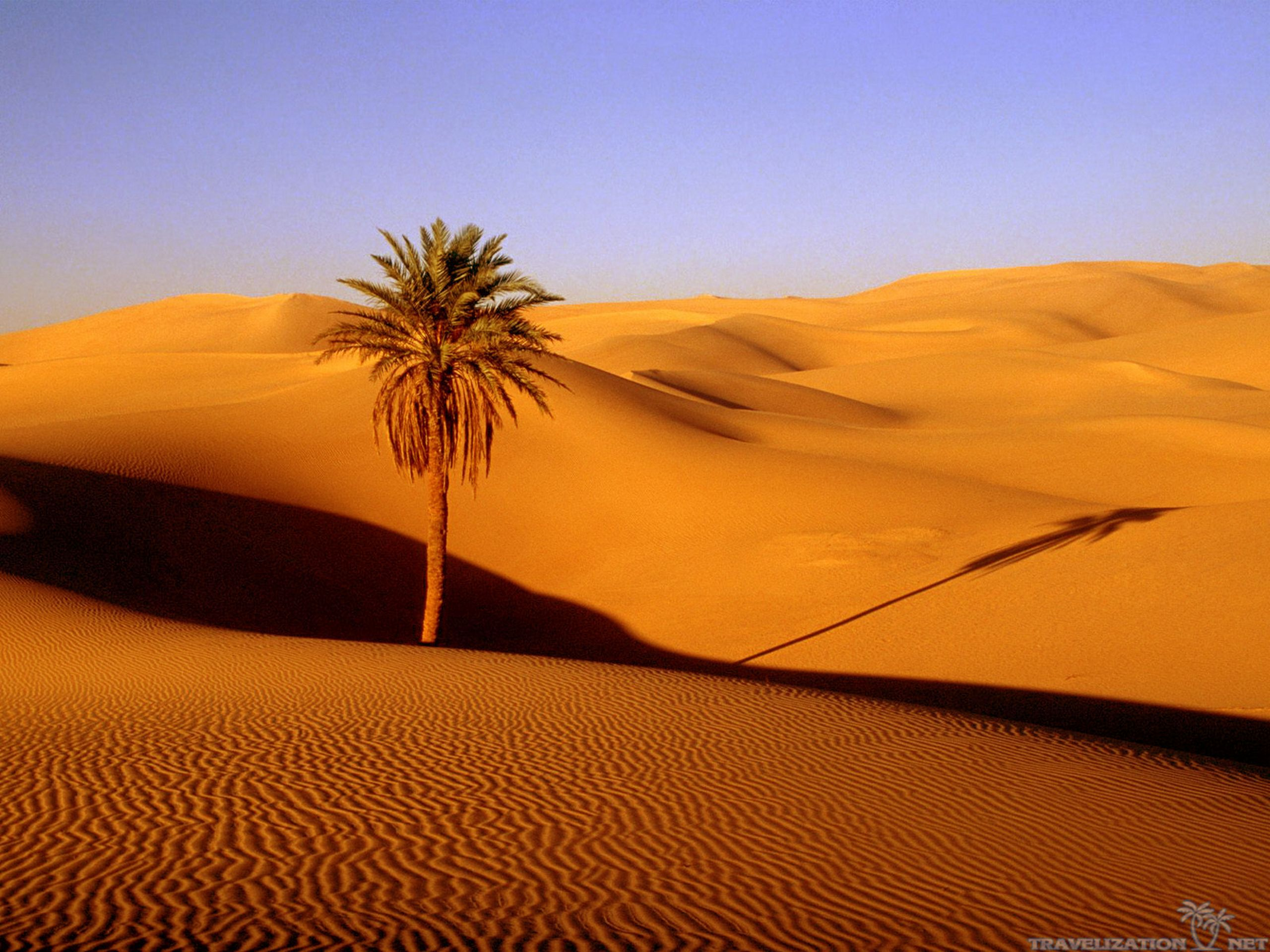 Peaceful Desert Wallpapers
