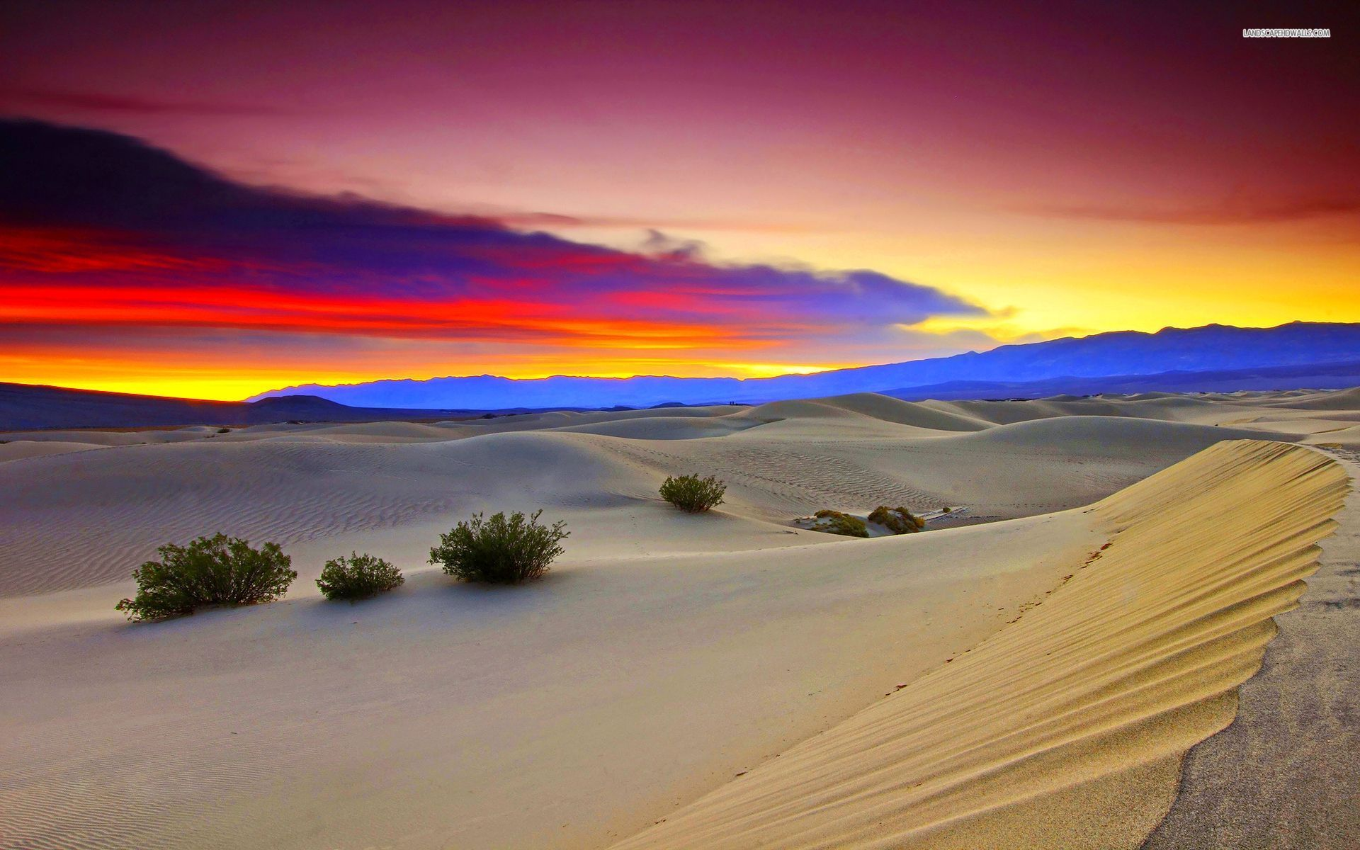 Dusk in the desert wallpaper 1920x1200 Original ...