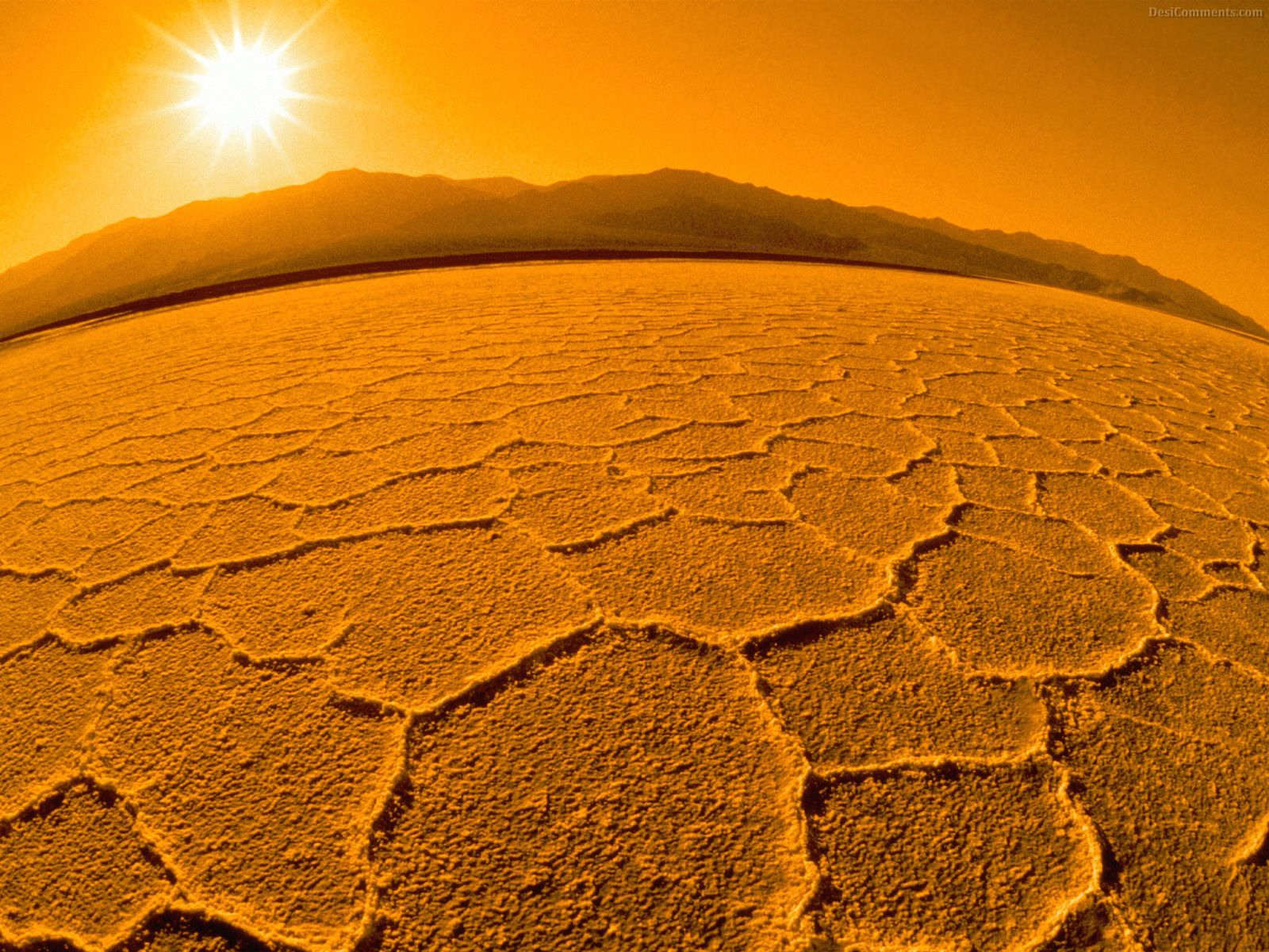 Desert Wallpaper #28