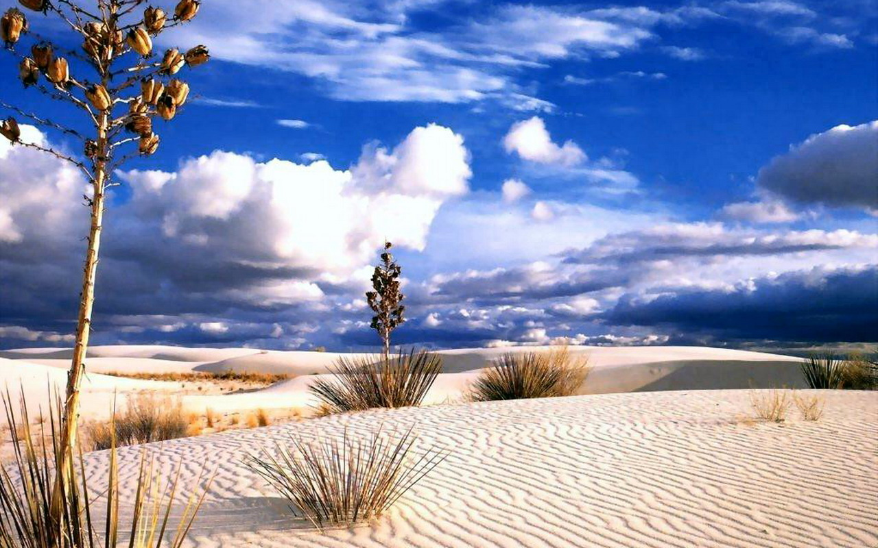 Very Beautiful Desert Cloudy View