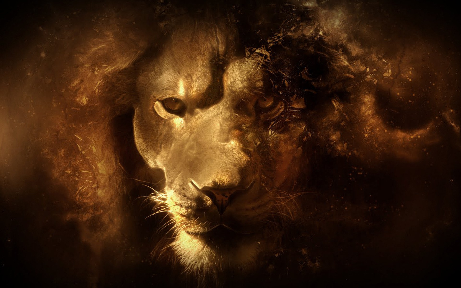 Lion Art Desktop Wallpaper