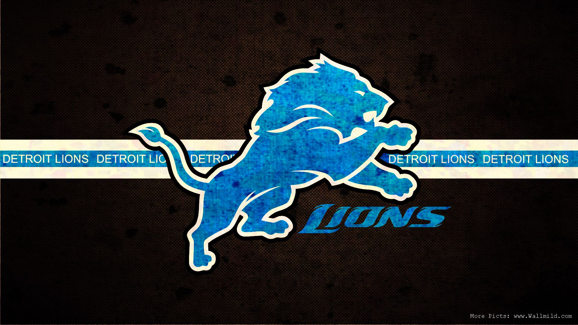 Detroit Lions NFL sign