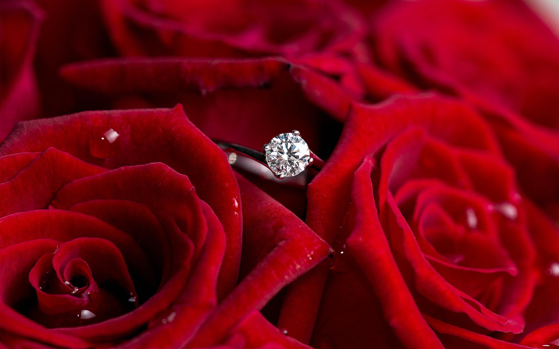 Diamond ring red roses