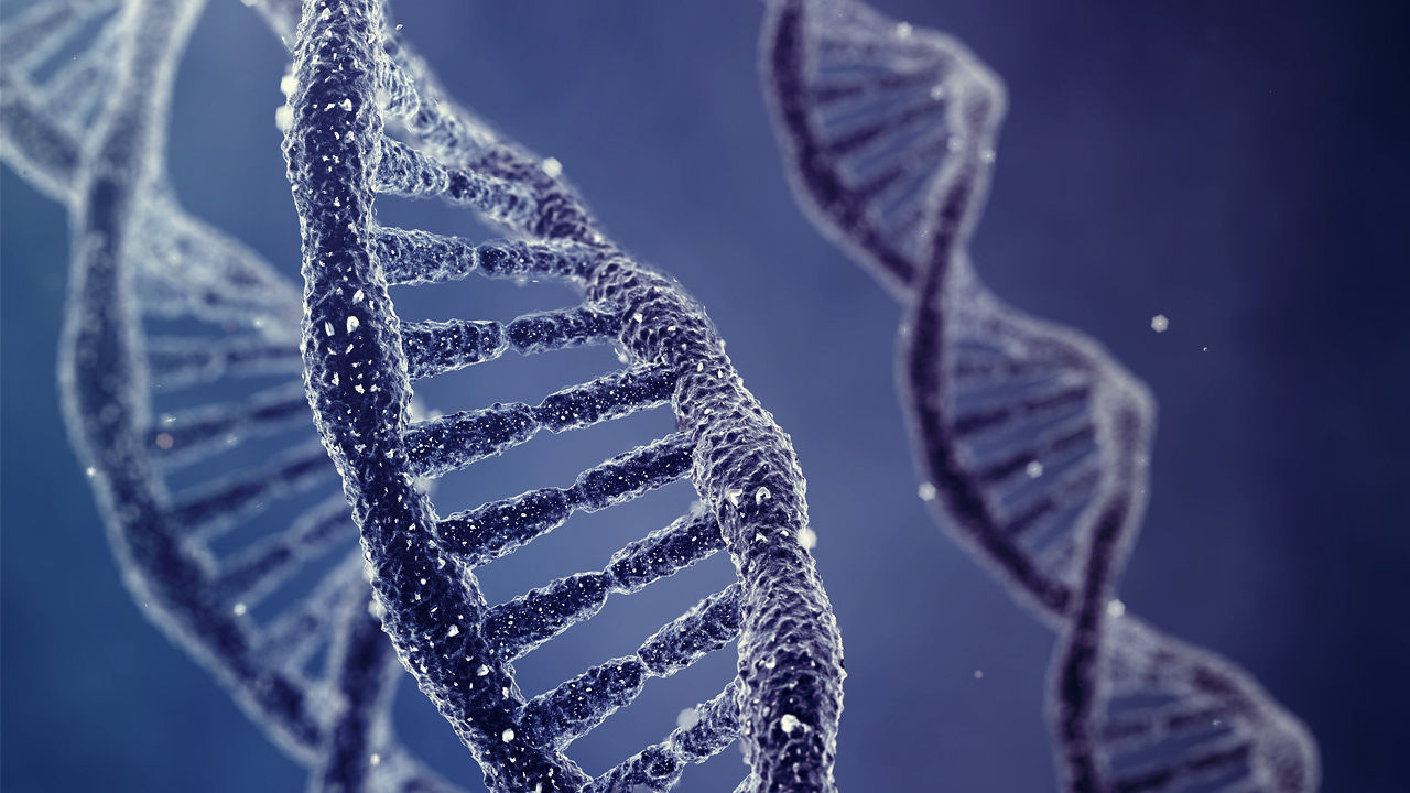 A New Programming Language That Can Shape Our DNA | Co.Exist | ideas + impact