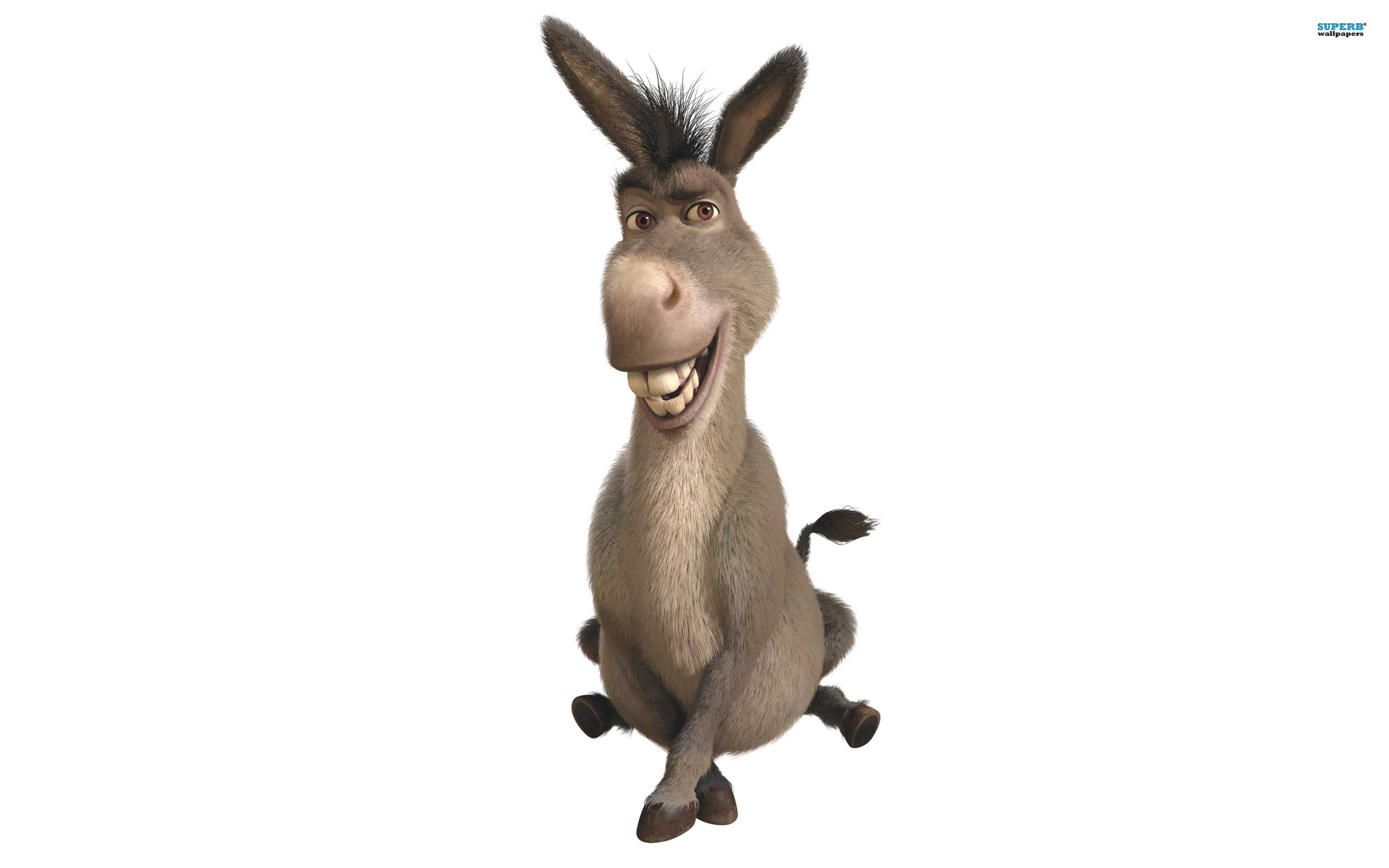 Donkey Cartoon Images